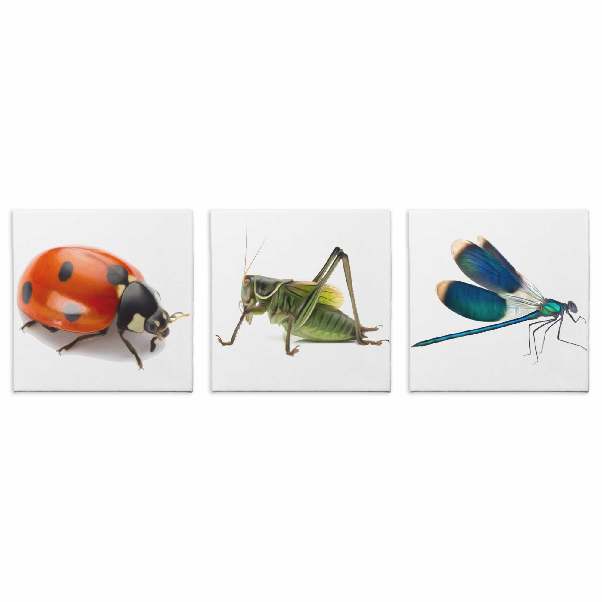 Backyard Bugs - Contemporary giclee Painting Print on Canvas