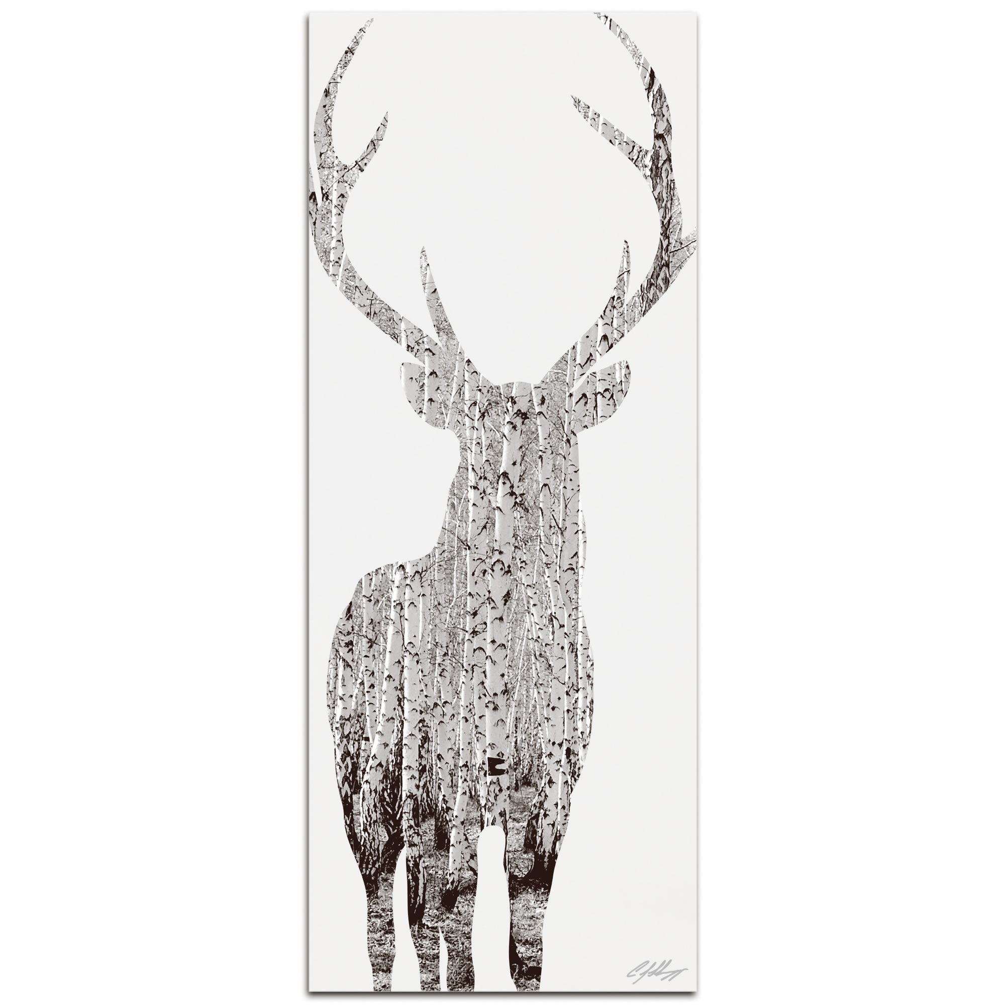BIRCH DEER - 48x19 in. Metal Animal Print