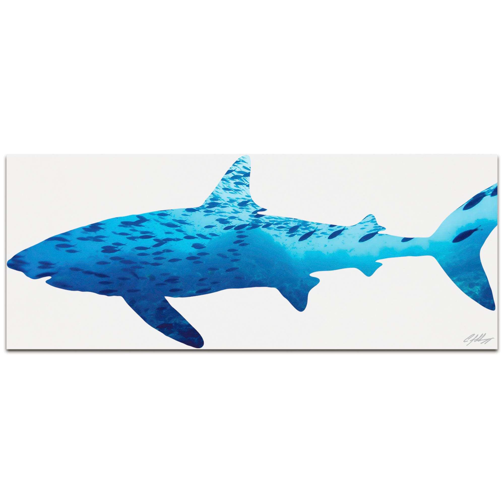 SHARK SEASCAPE - 48x19 in. Metal Animal Print