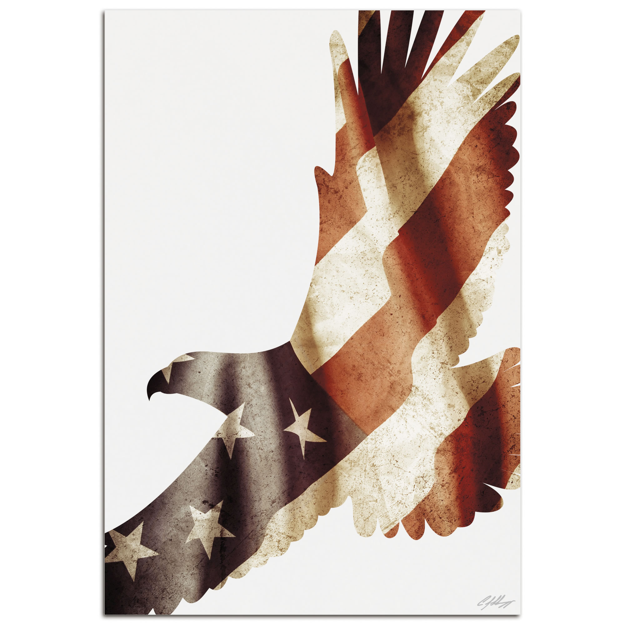 FREEDOM EAGLE - 32x22 in. Metal US Flag Print