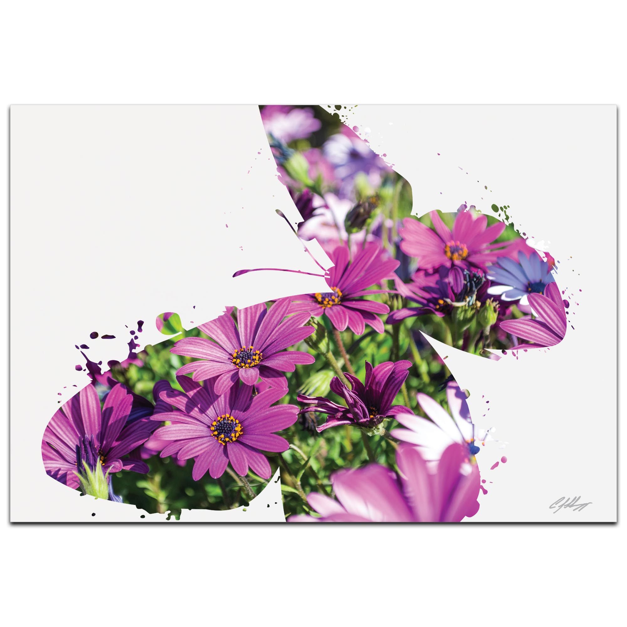 Butterfly Flowers by Adam Schwoeppe Animal Silhouette on White Metal