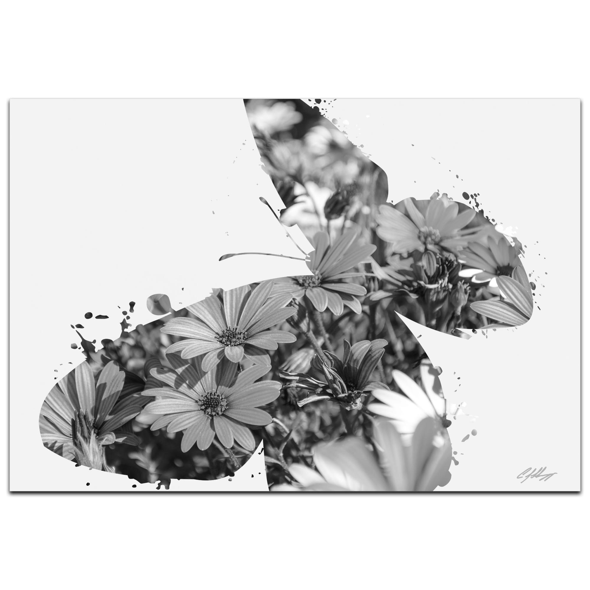 Butterfly Flowers Gray by Adam Schwoeppe Animal Silhouette on White Metal