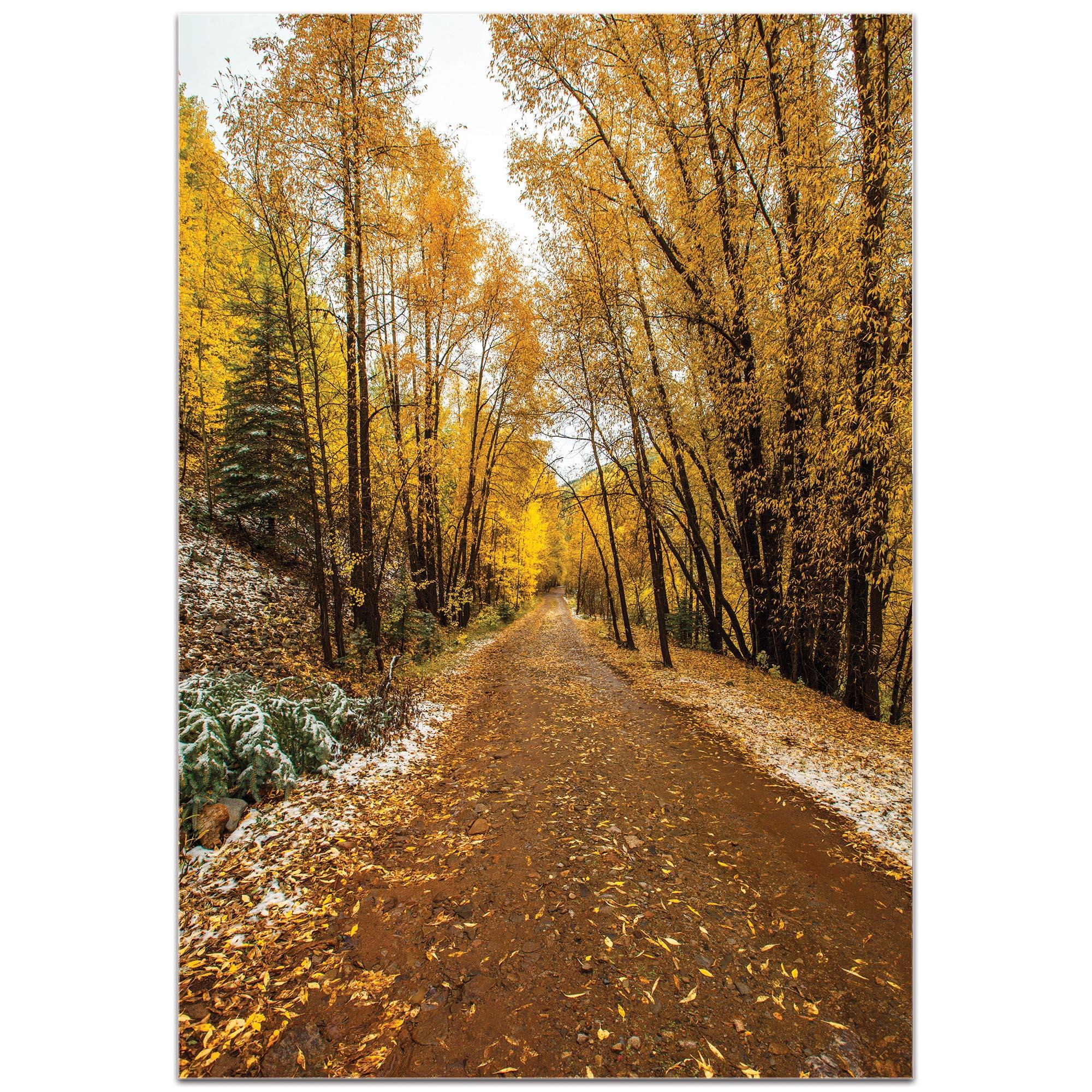 Landscape Photography 'Mountain Pass' - Autumn Trees Art on Metal or Plexiglass - Image 2