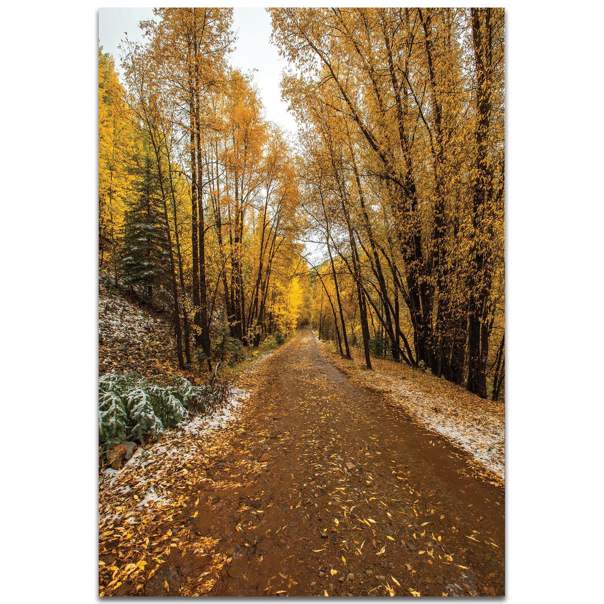 Landscape Photography 'Mountain Pass' - Autumn Trees Art on Metal or Plexiglass