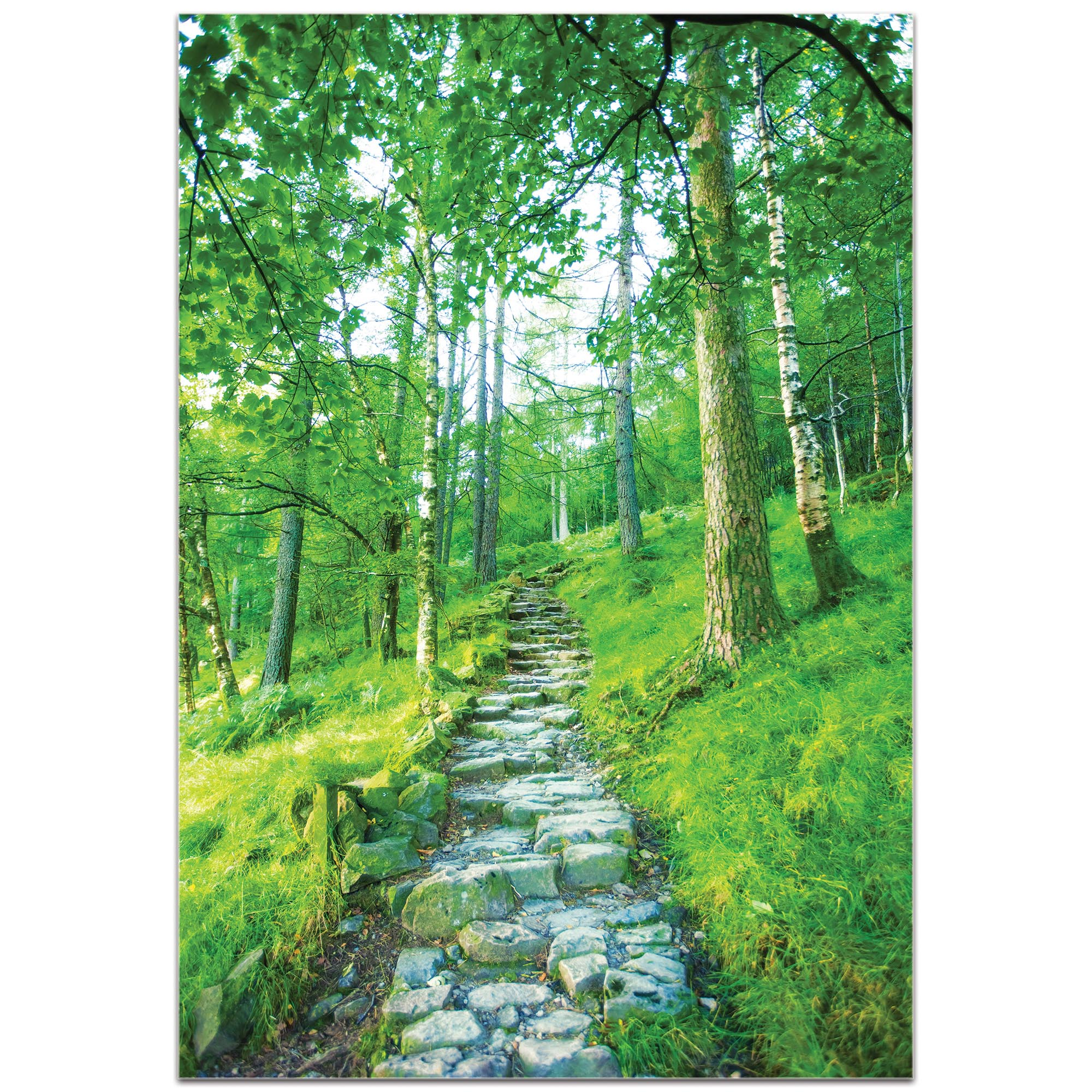 Landscape Photography 'Cobblestone Path' - Green Trees Art on Metal or Plexiglass - Image 2