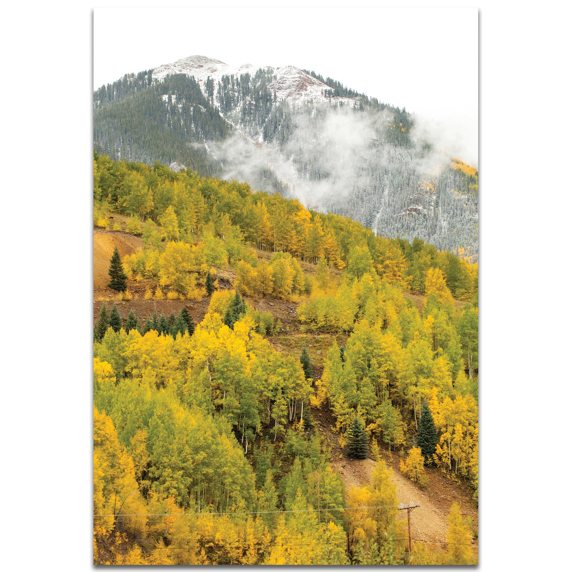 Landscape Photography 'Changing Season' - Autumn Nature Art on Metal or Plexiglass