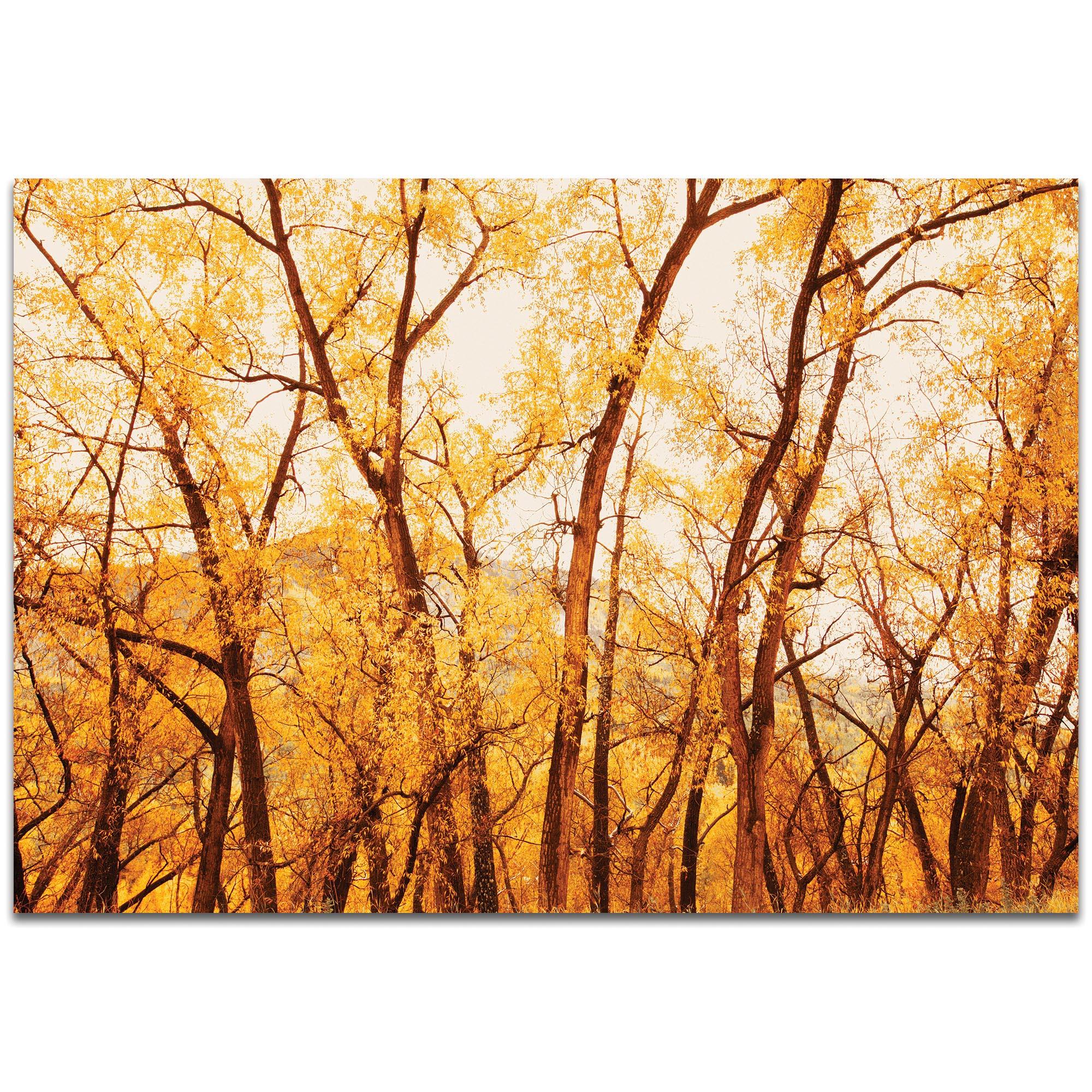 Metal Art Studio Fall Trees By Meirav Levy Landscape