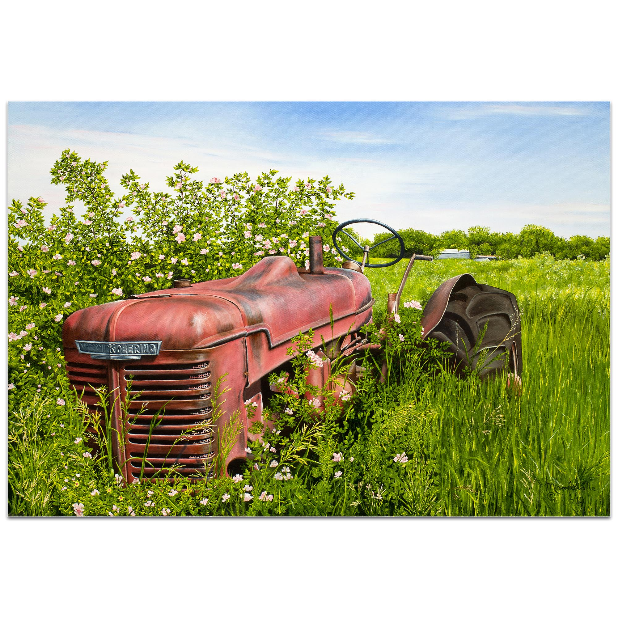 Americana Wall Art 'A Blanket of Roses' - Classic Tractor Decor on Metal or Plexiglass - Image 2