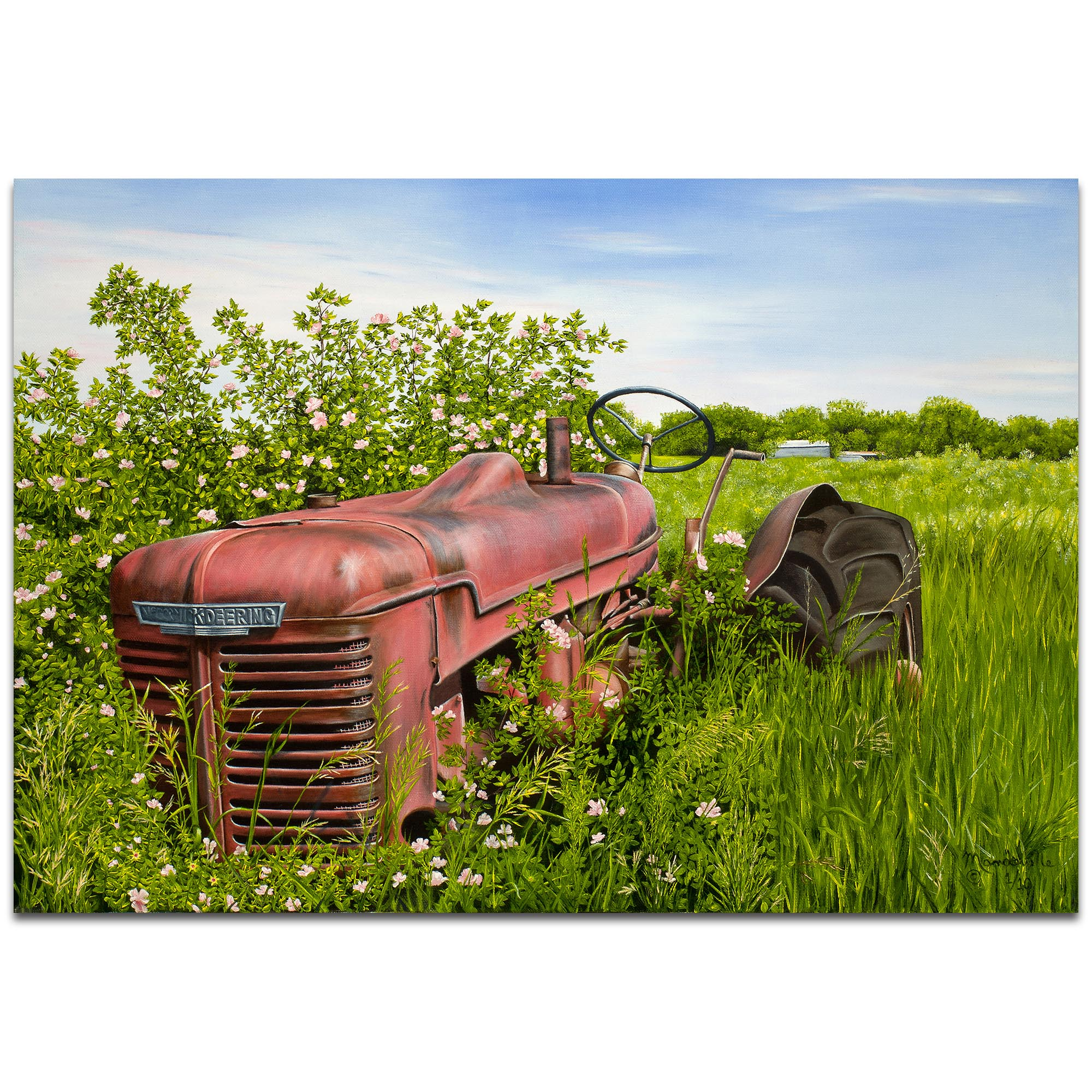 Americana Wall Art 'A Blanket of Roses' - Classic Tractor Decor on Metal or Plexiglass