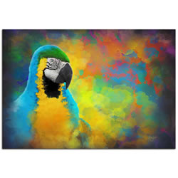 Parrot Splotch - Contemporary Rainbow Bird Art on Metal