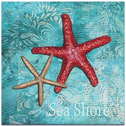 Starfish Wall Art Sea Shore - Coastal Decor on Metal or Acrylic