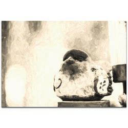 Eclectic Wall Art The Face - Statues Decor on Metal or Plexiglass