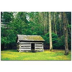 Western Wall Art The Cottage - Farm Landscape Decor on Metal or Plexiglass