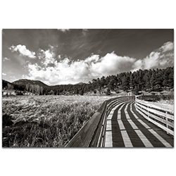 Film Noir Wall Art Wooden Walkway - Dramatic Landscape Decor on Metal or Plexiglass