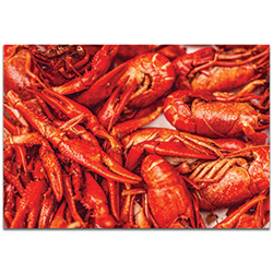 Coastal Wall Art Crawfish Supper - Crayfish Boil Decor on Metal or Plexiglass