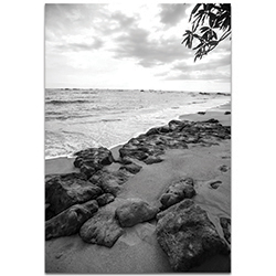 Black & White Photography The Coastline - Coastal Art on Metal or Plexiglass