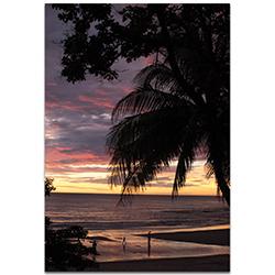 Coastal Wall Art Coastal Sunset Skies - Beach Sunset Decor on Metal or Plexiglass
