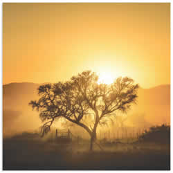Golden Sunrise by Piet Flour - Landscape Photography on Metal or Acrylic