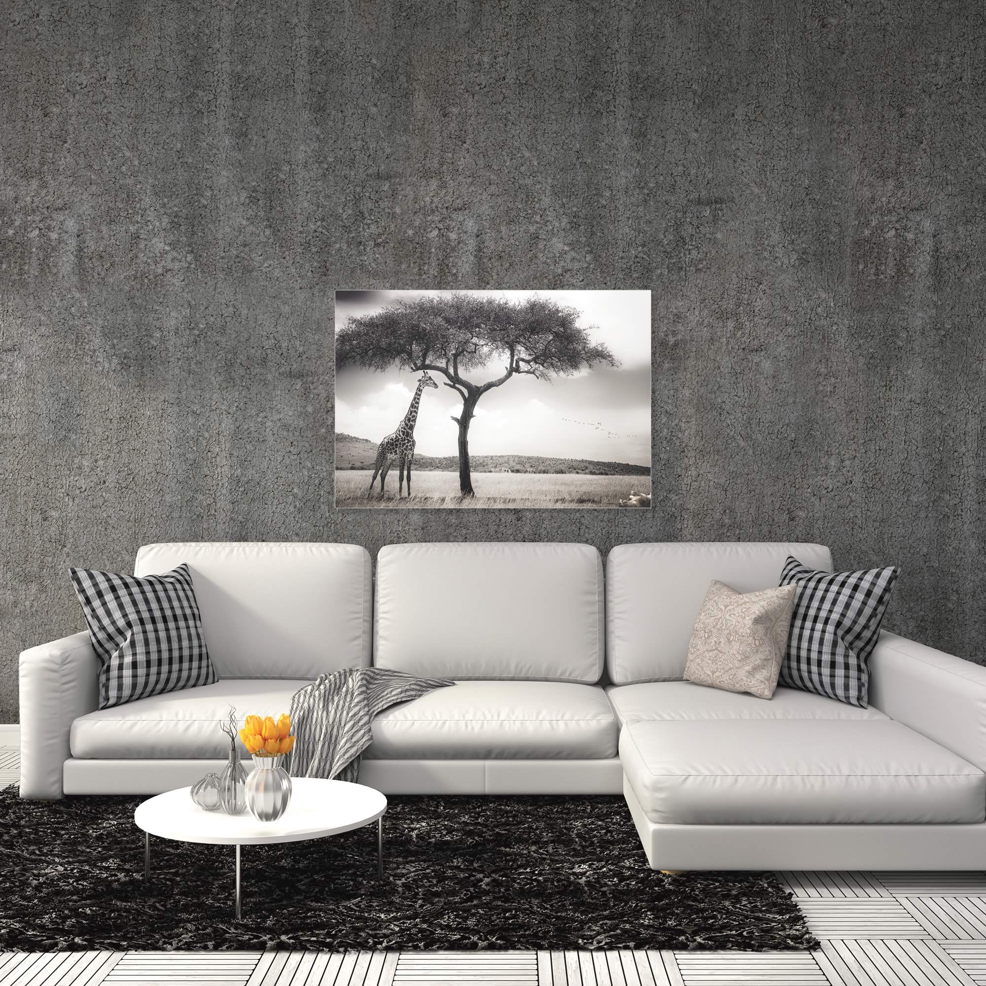 Under the African Sun by Piet Flour - Giraffe Wall Art on Metal or Acrylic - Alternate View 1