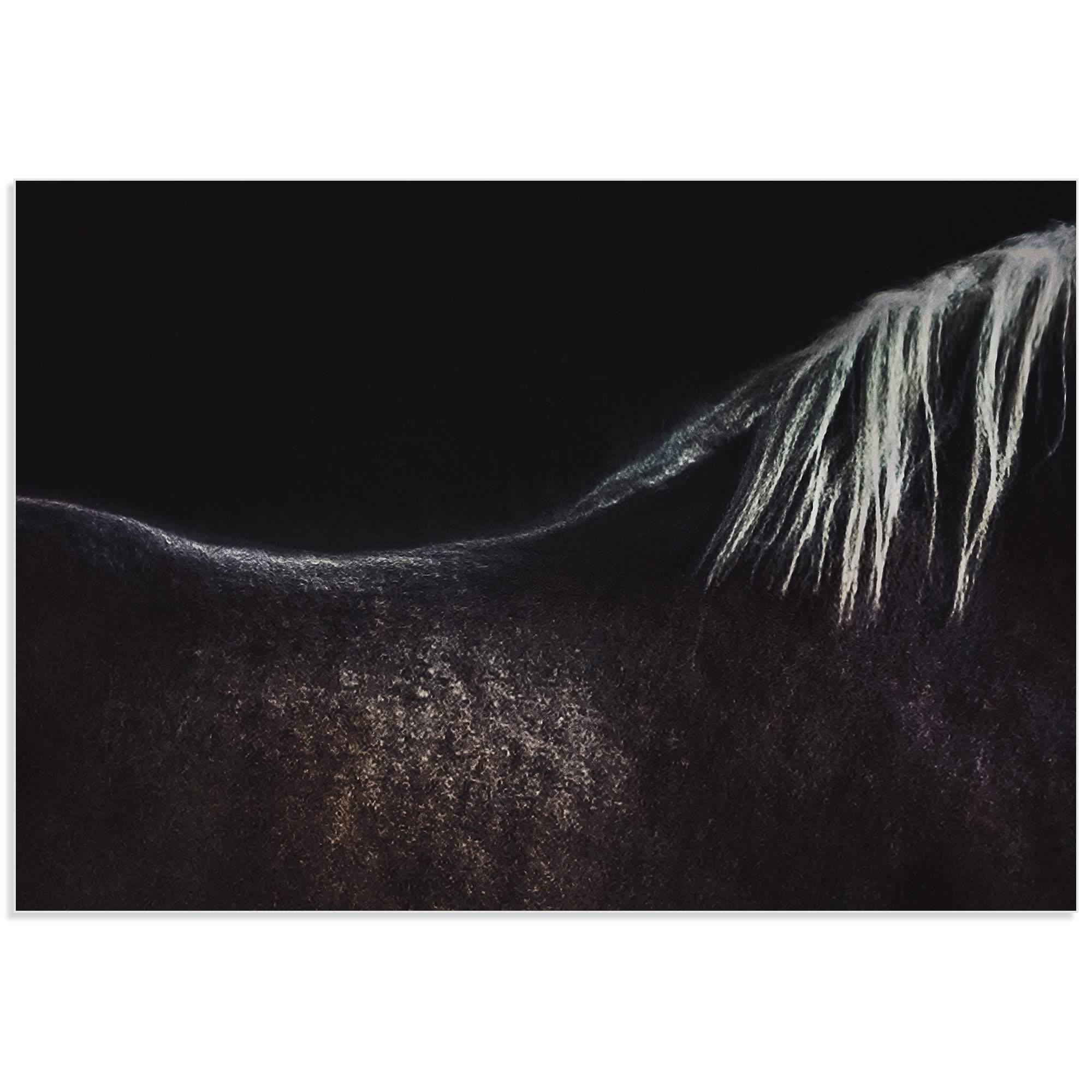 Naked Horse by Piet Flour - Horse Wall Art on Metal or Acrylic - Alternate View 2