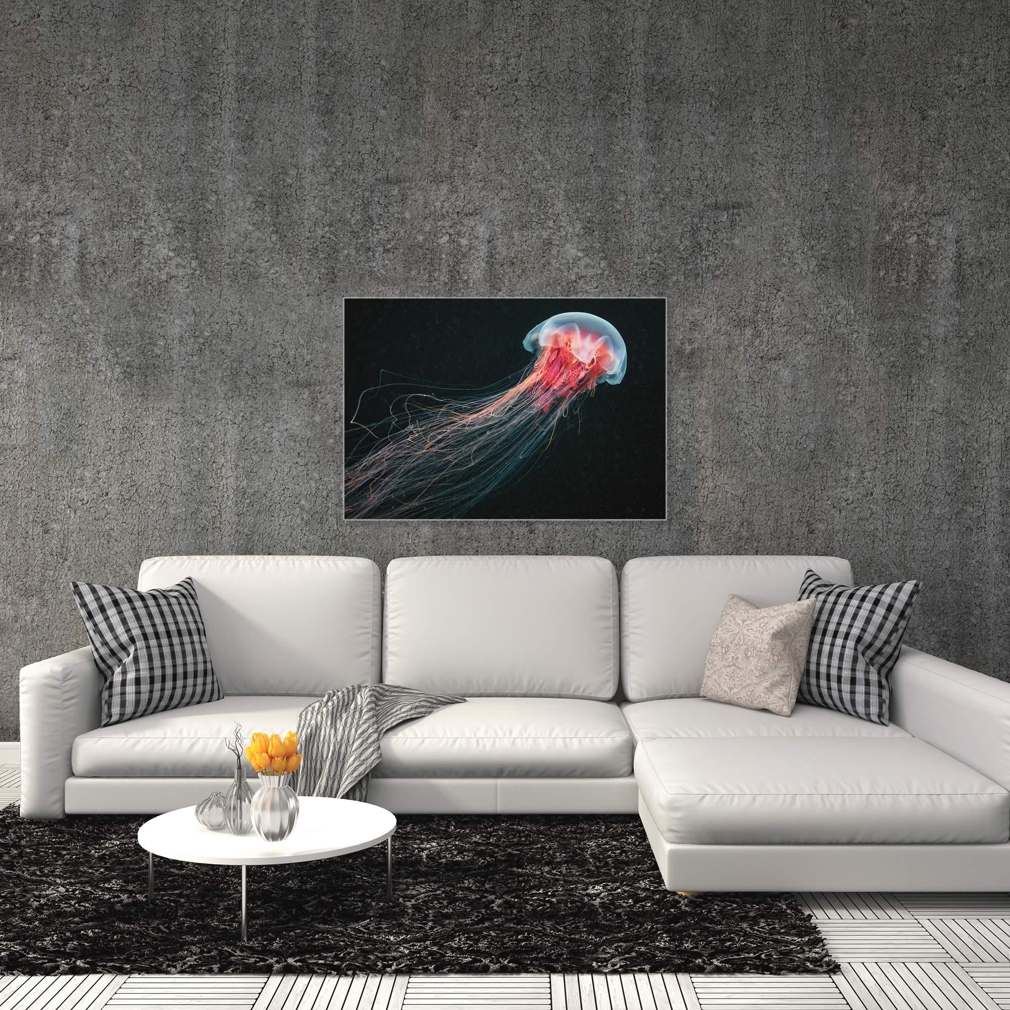 Longtail Jellyfish by Alexander Semenov - Jellyfish Artwork on Metal or Acrylic - Alternate View 3