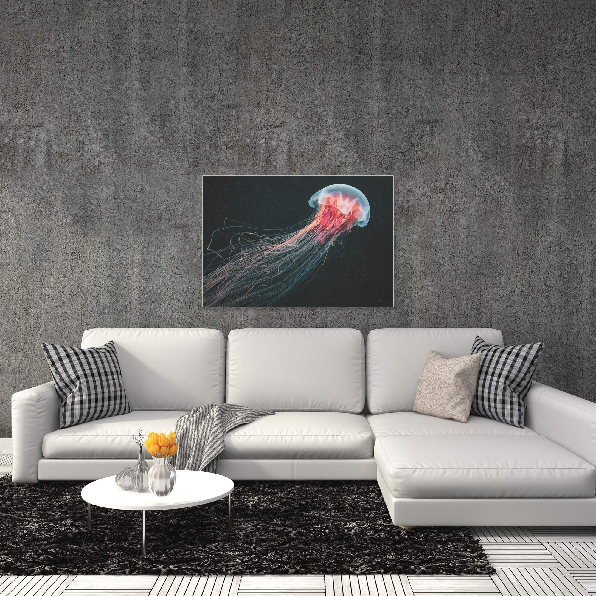 Longtail Jellyfish by Alexander Semenov - Jellyfish Artwork on Metal or Acrylic - Alternate View 1