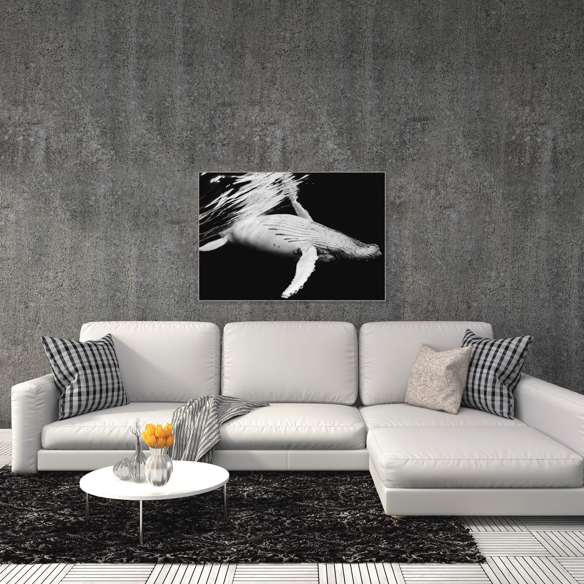 Black and White Whale by Barathieu Gabriel - Contemporary Whale Art on Metal or Acrylic - Alternate View 3
