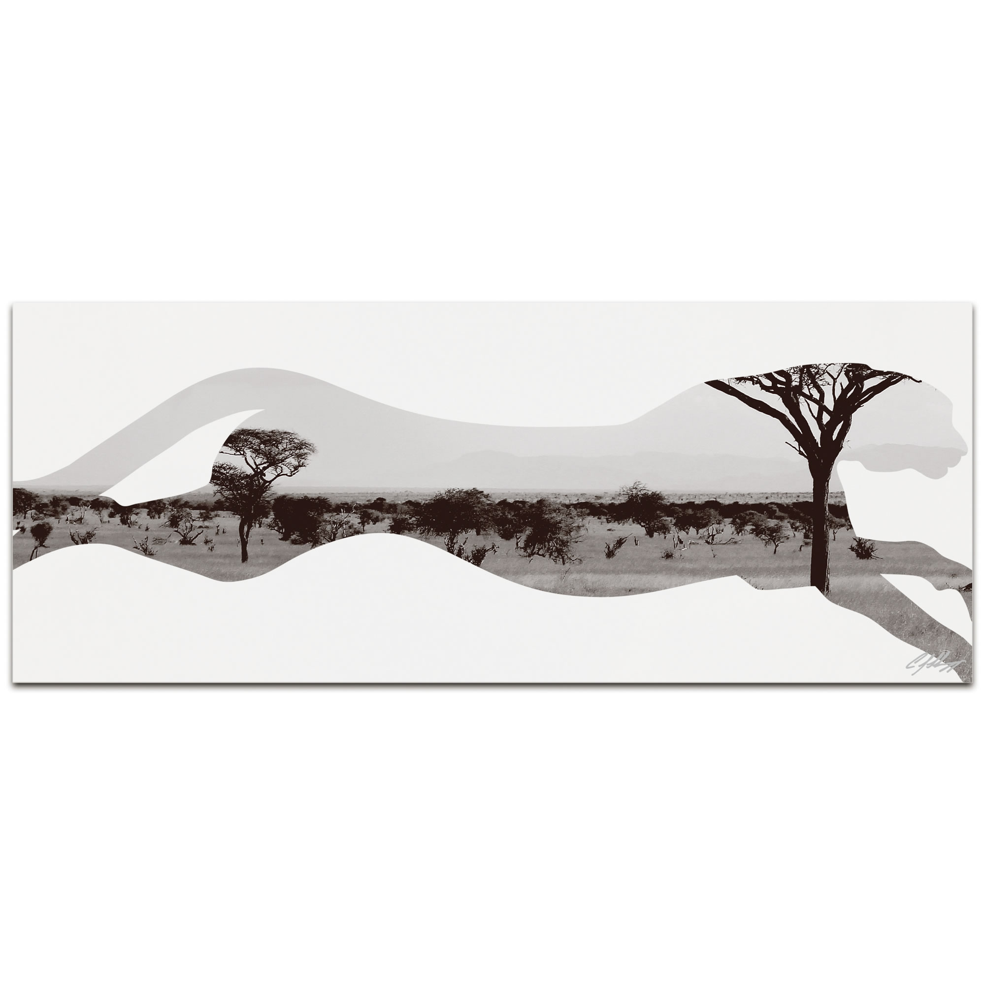 CHEETAH SAVANNA - 48x19 in. Metal Animal Print