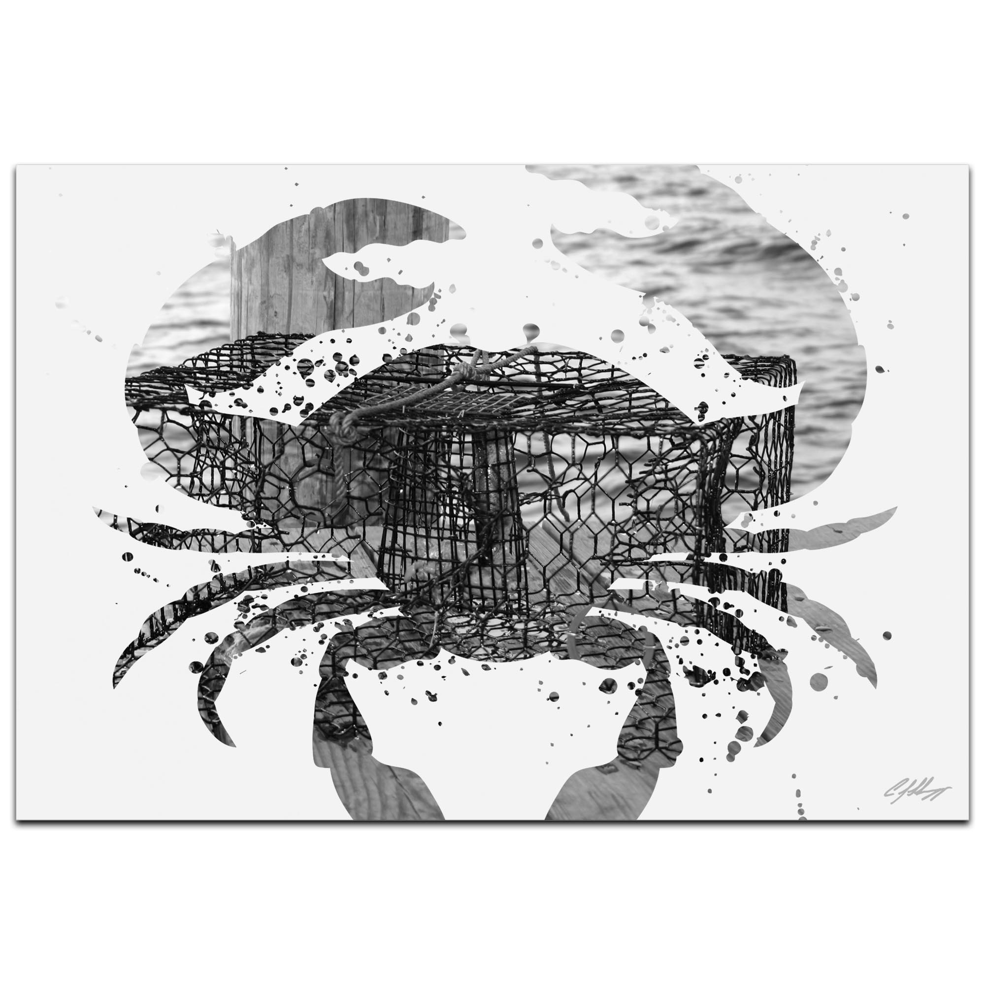Crab Pot Gray by Adam Schwoeppe Animal Silhouette on White Metal