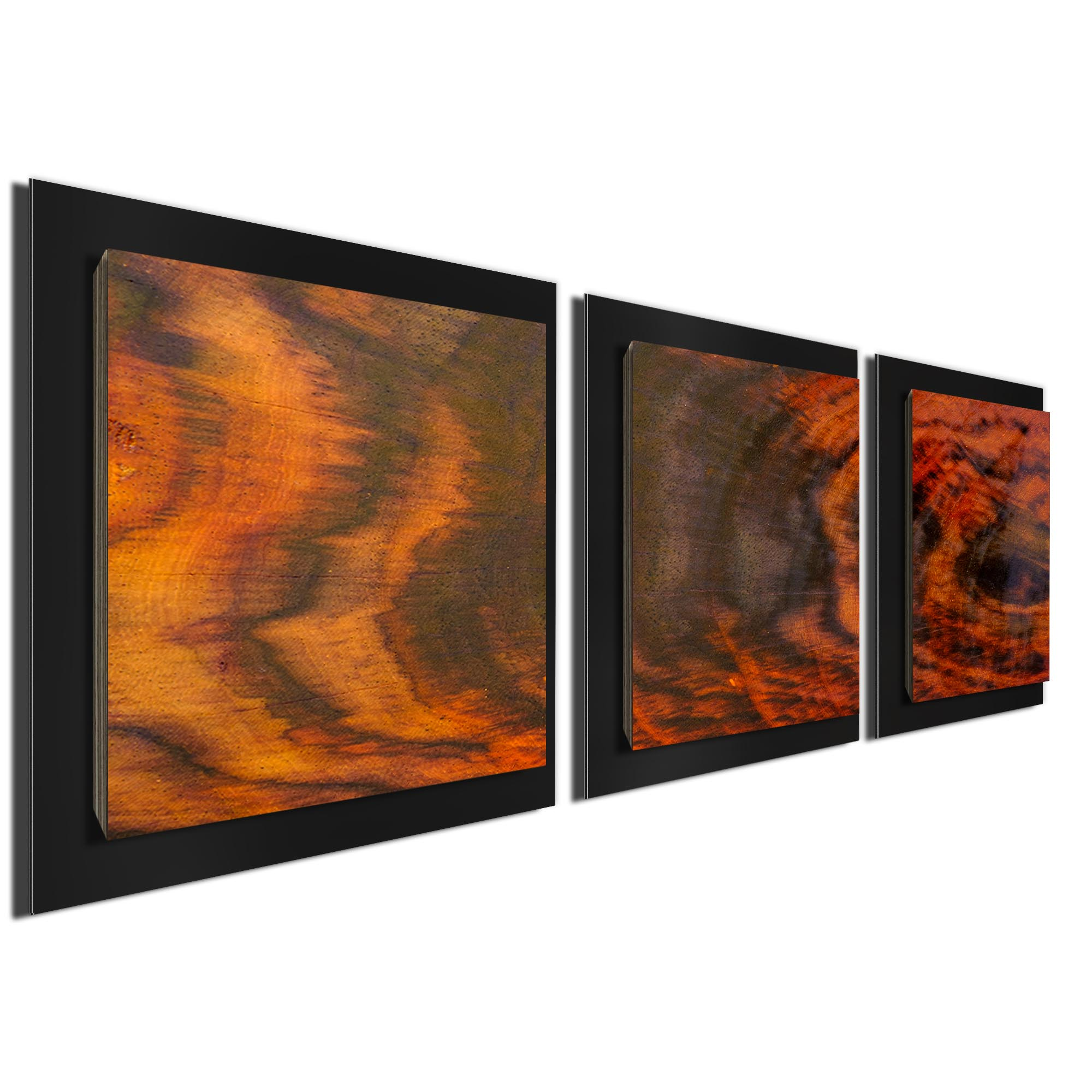 Burnt Wood Essence Black by Adam Schwoeppe Rustic Modern Style Wood Wall Art - Image 2
