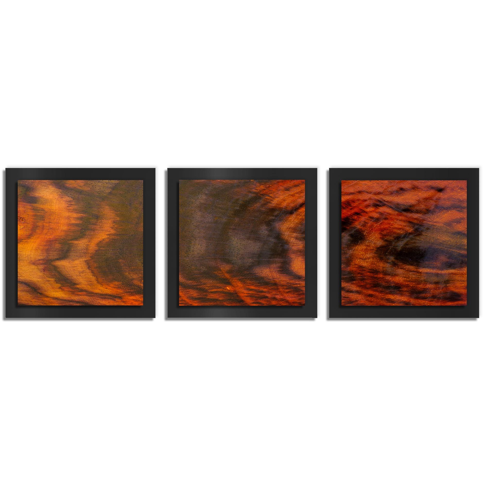 Adam Schwoeppe 'Burnt Wood Essence Black' 38in x 12in Contemporary Style Wood Wall Art