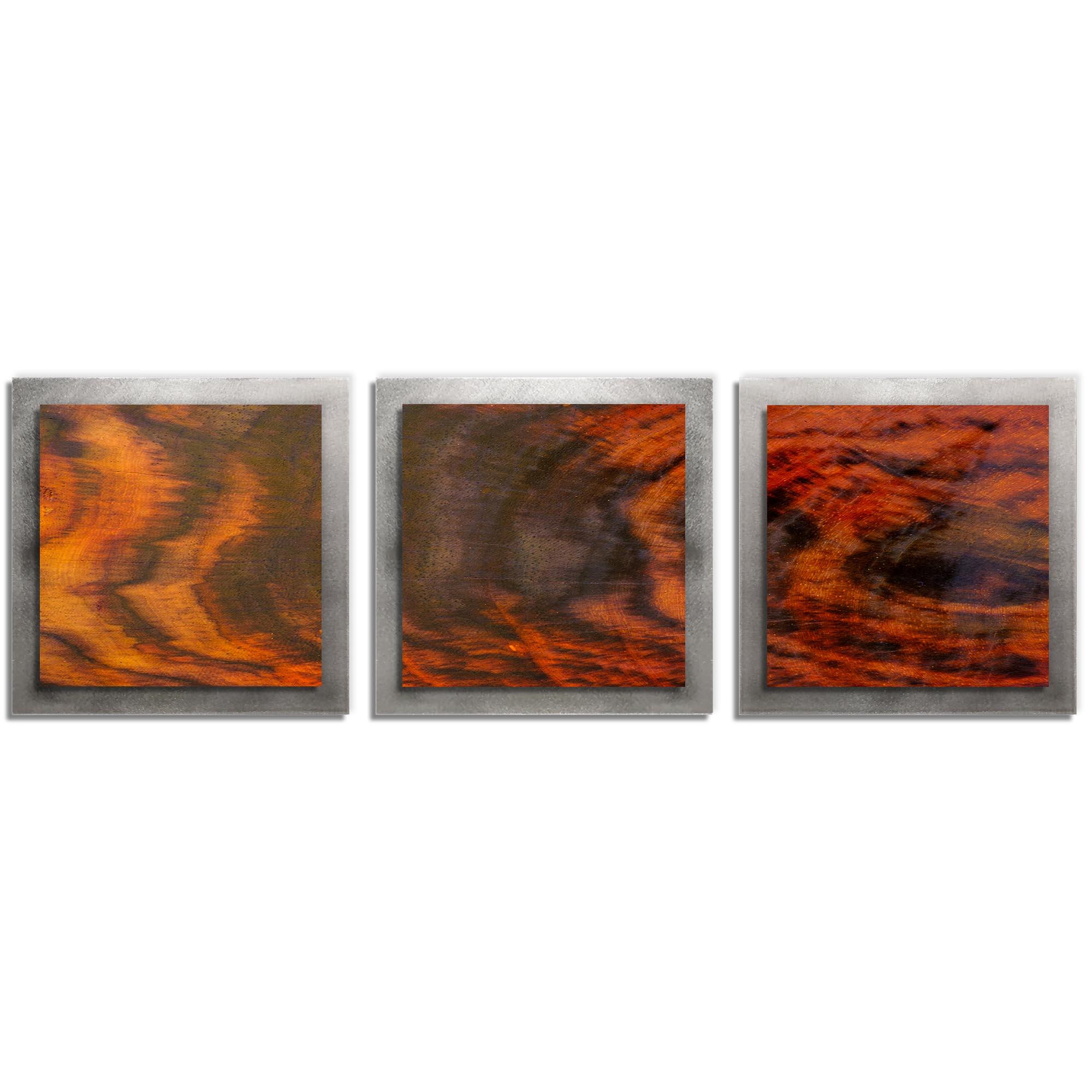 Adam Schwoeppe 'Burnt Wood Essence Silver' 38in x 12in Contemporary Style Wood Wall Art