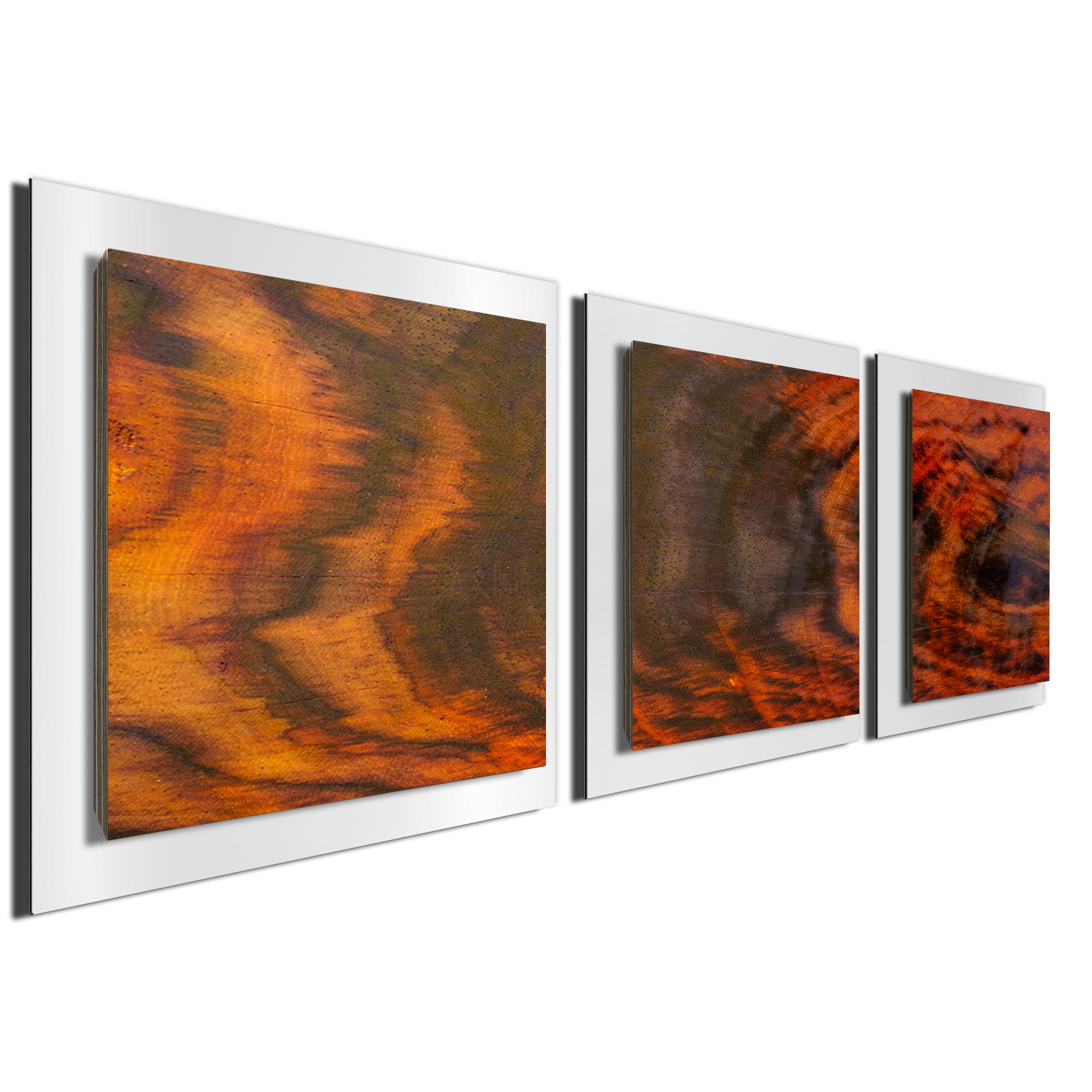 Burnt Wood Essence White by Adam Schwoeppe Rustic Modern Style Wood Wall Art - Image 2