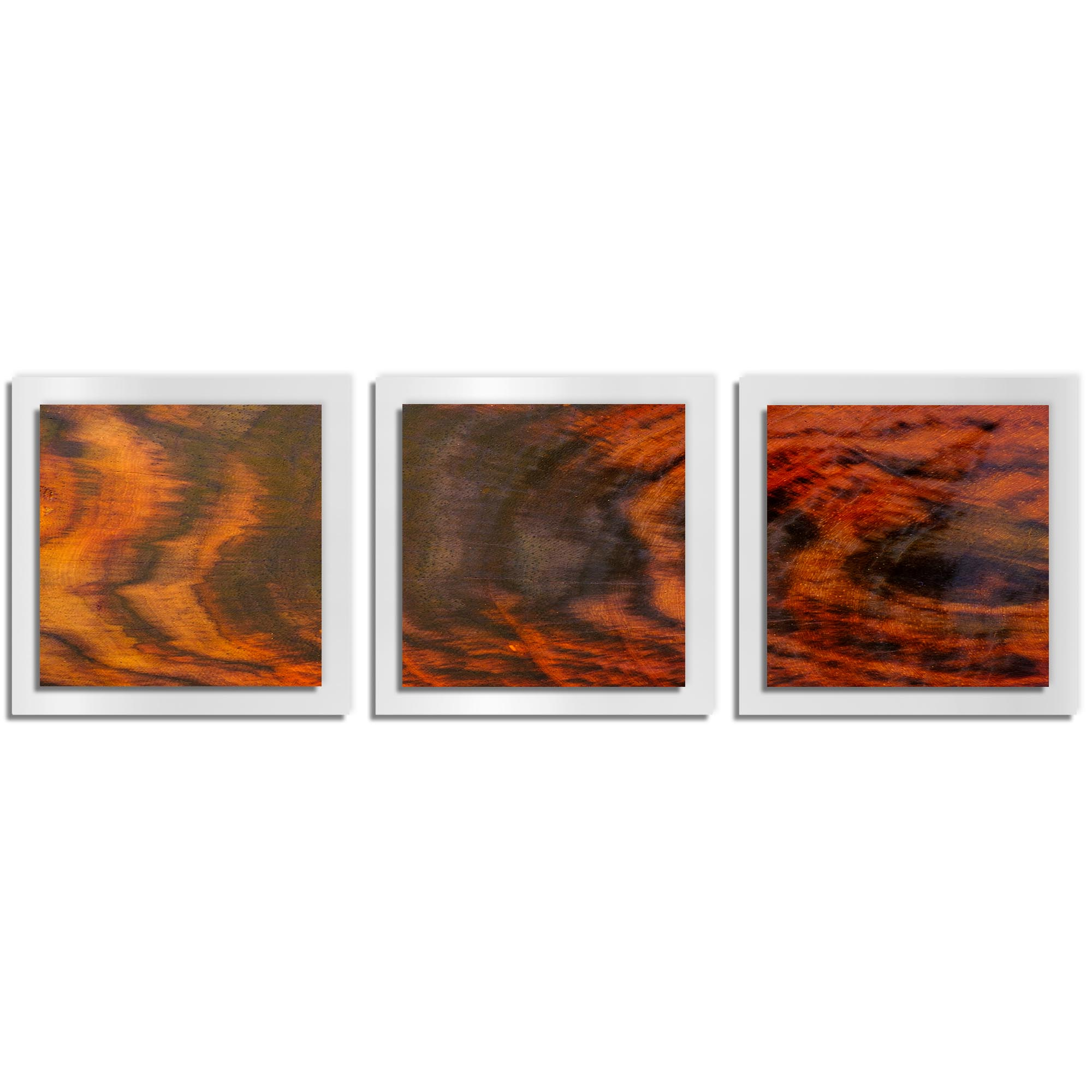 Adam Schwoeppe 'Burnt Wood Essence White' 38in x 12in Contemporary Style Wood Wall Art