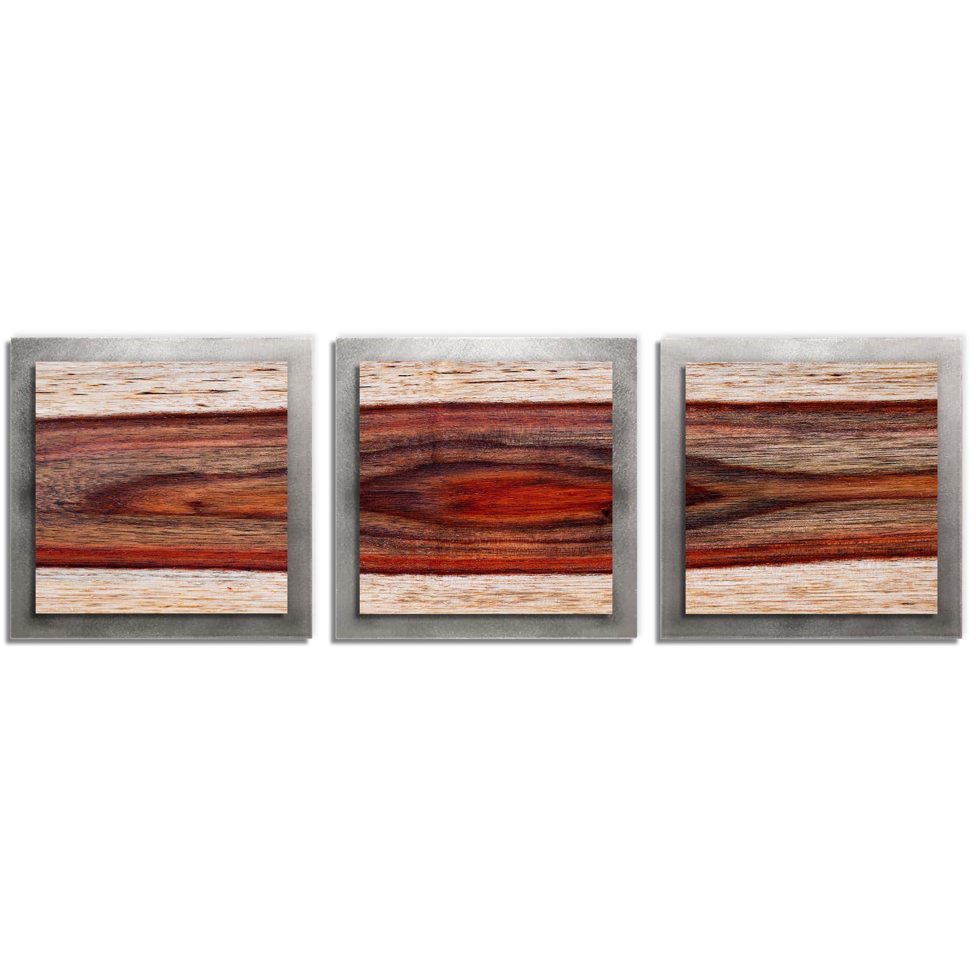 Adam Schwoeppe 'Auburn Wood Essence Silver' 38in x 12in Contemporary Style Wood Wall Art