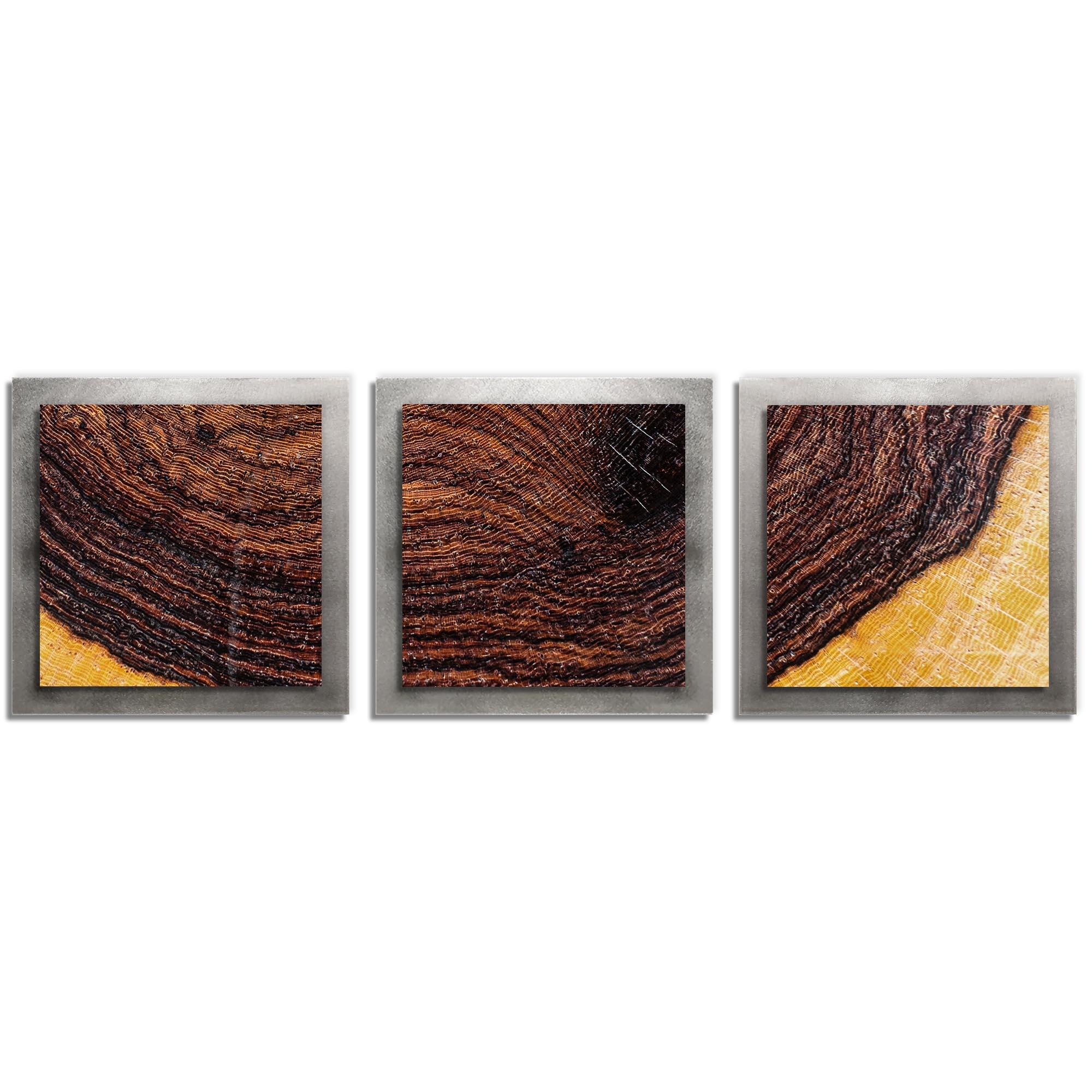 Adam Schwoeppe 'Bold Wood Essence Silver' 38in x 12in Contemporary Style Wood Wall Art