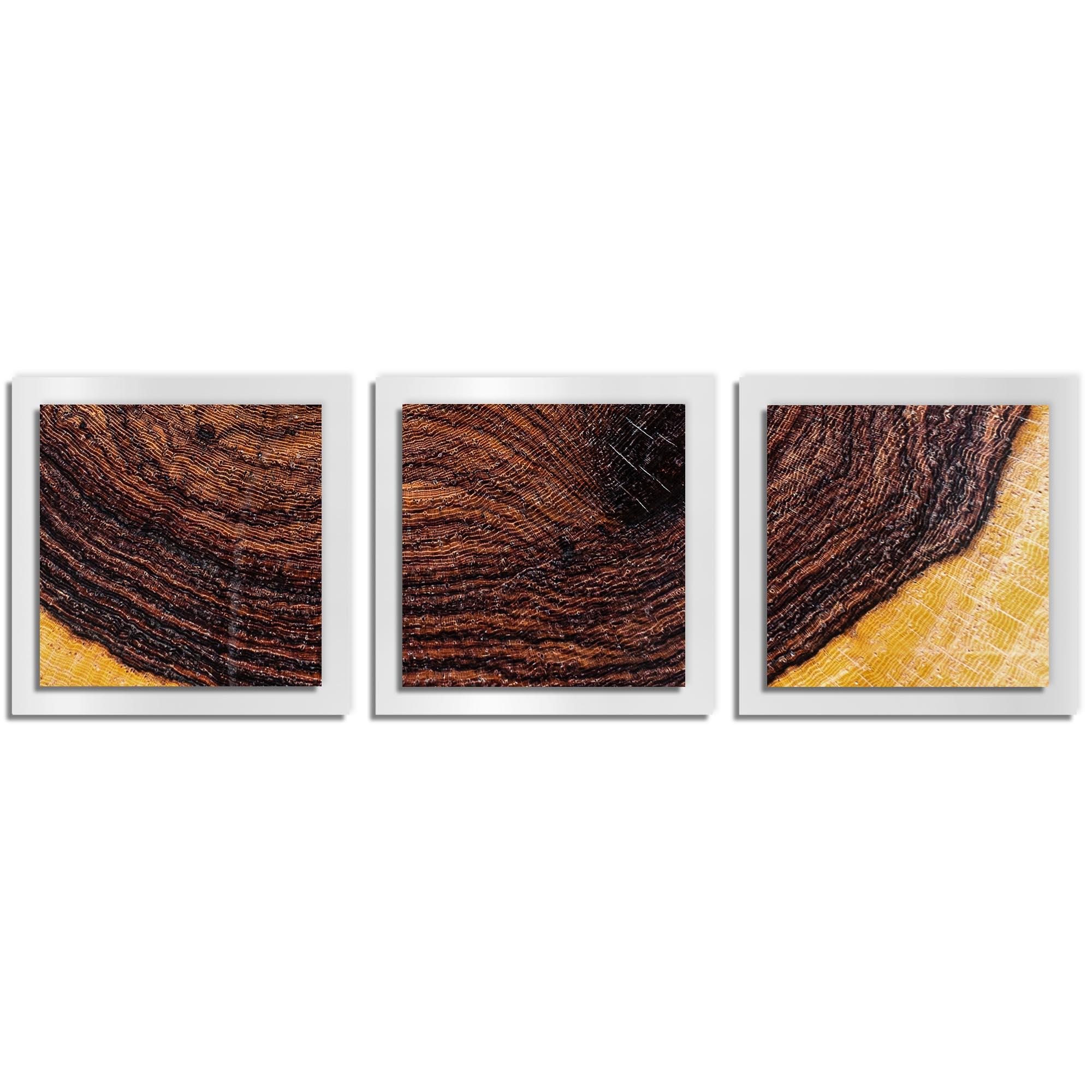 Adam Schwoeppe 'Bold Wood Essence White' 38in x 12in Contemporary Style Wood Wall Art