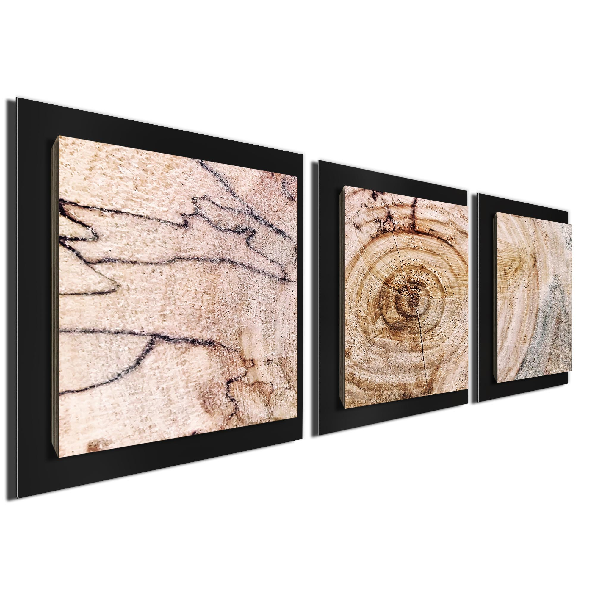 Aged Wood Essence Black by Adam Schwoeppe Rustic Modern Style Wood Wall Art - Image 2