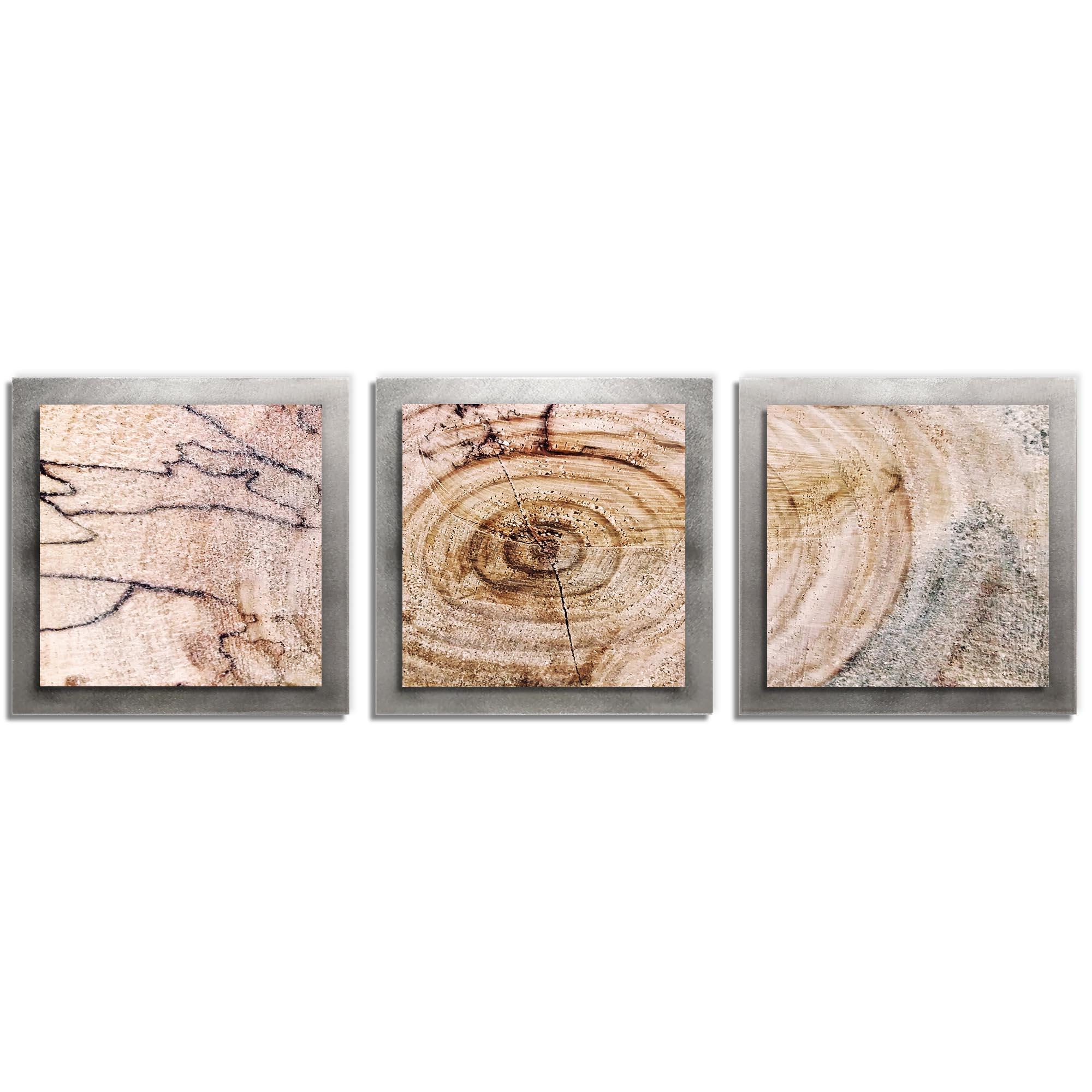 Adam Schwoeppe 'Aged Wood Essence Silver' 38in x 12in Contemporary Style Wood Wall Art