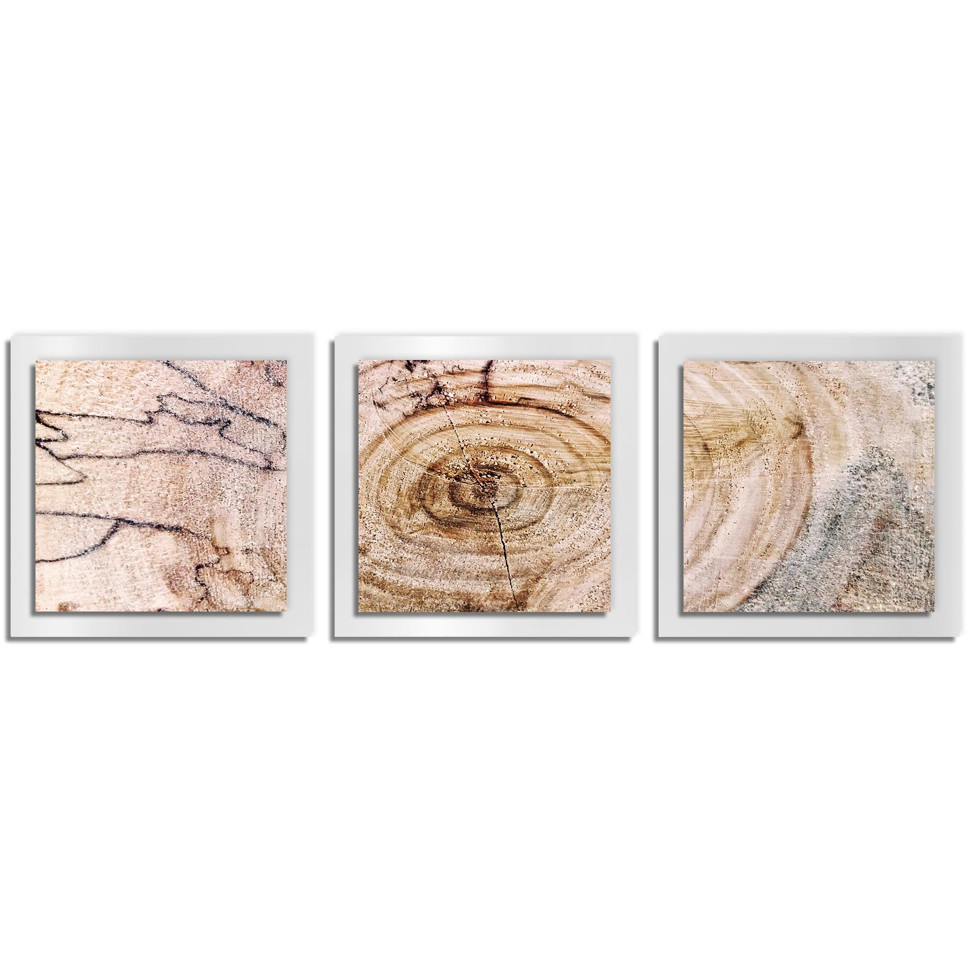 Adam Schwoeppe 'Aged Wood Essence White' 38in x 12in Contemporary Style Wood Wall Art