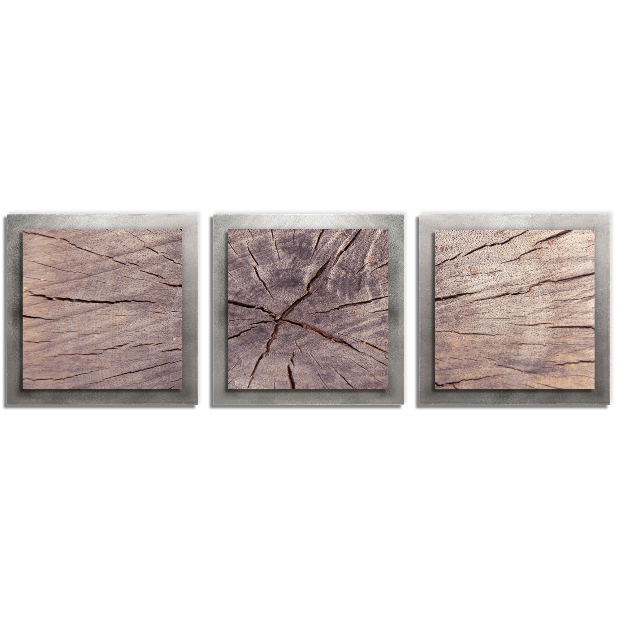 Adam Schwoeppe 'Cracked Wood Essence Silver' 38in x 12in Contemporary Style Wood Wall Art