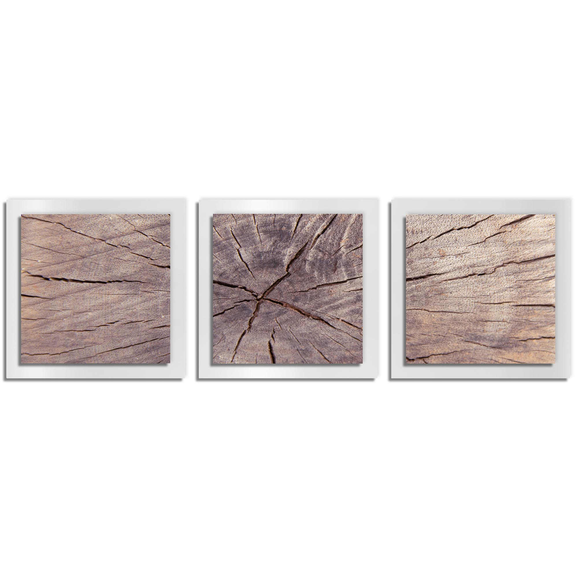 Adam Schwoeppe 'Cracked Wood Essence White' 38in x 12in Contemporary Style Wood Wall Art