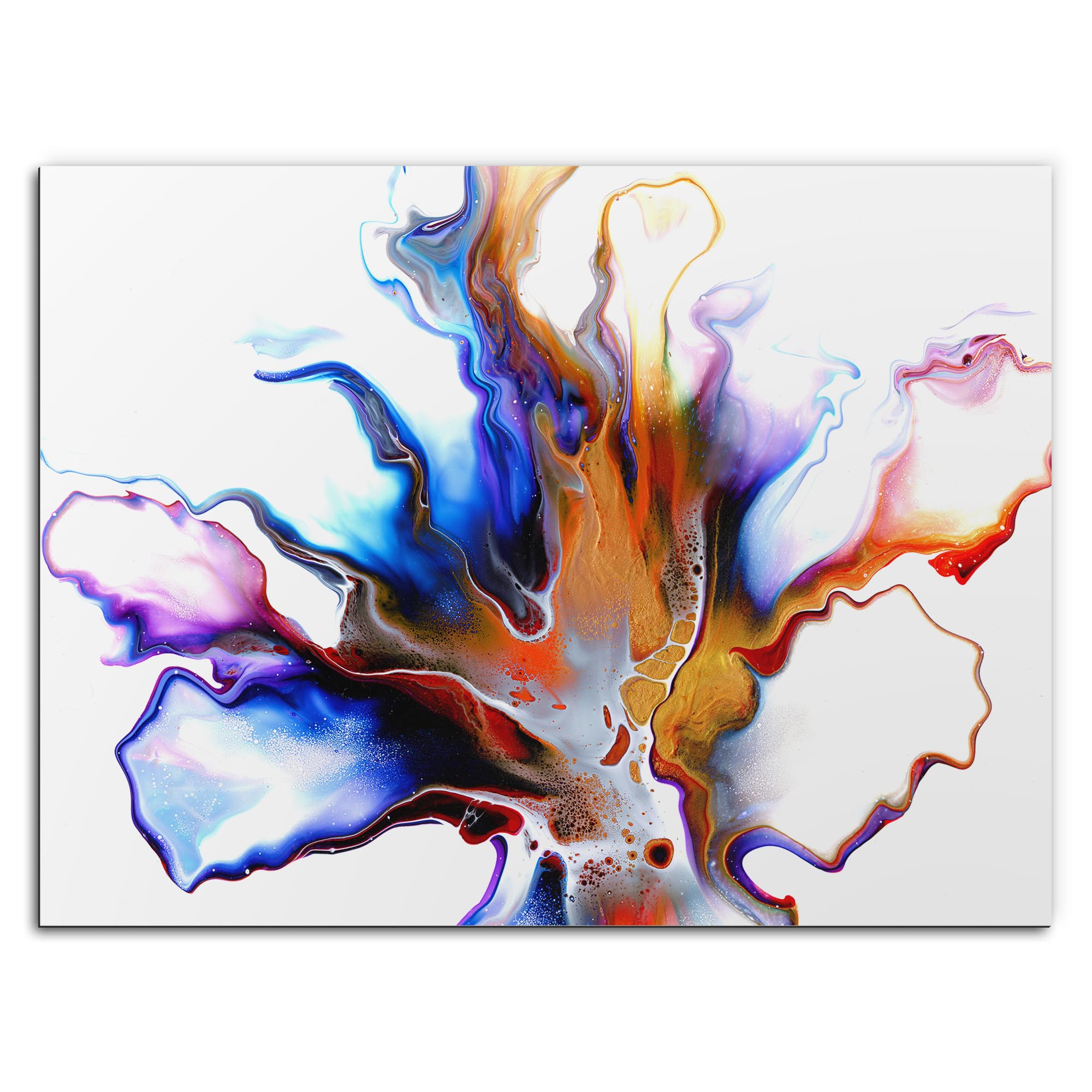 Elana Reiter 'Eruption' 32in x 24in Contemporary Style Abstract Wall Art