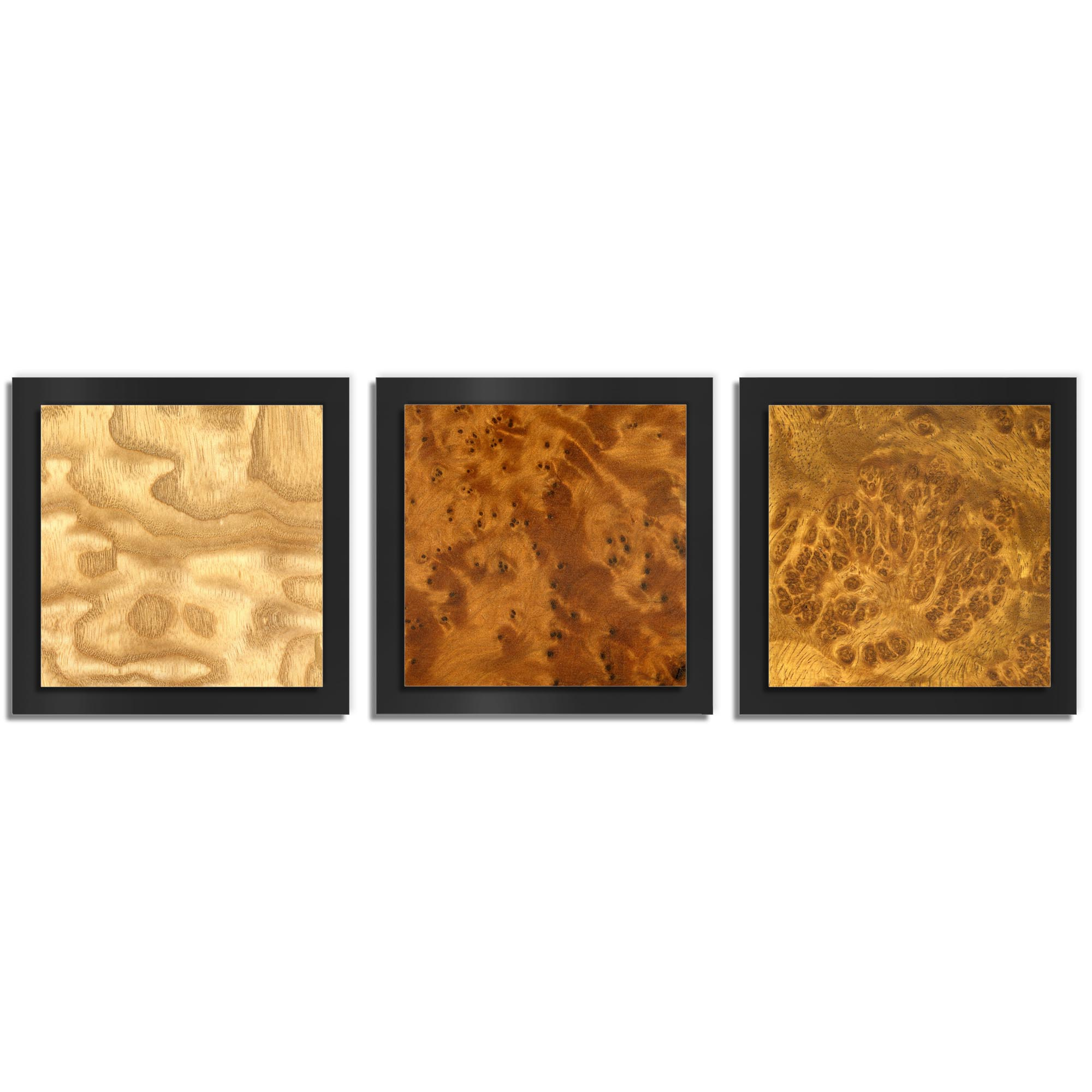 Jackson Wright 'Array Burl Essence Black' 38in x 12in Contemporary Style Wood Wall Art