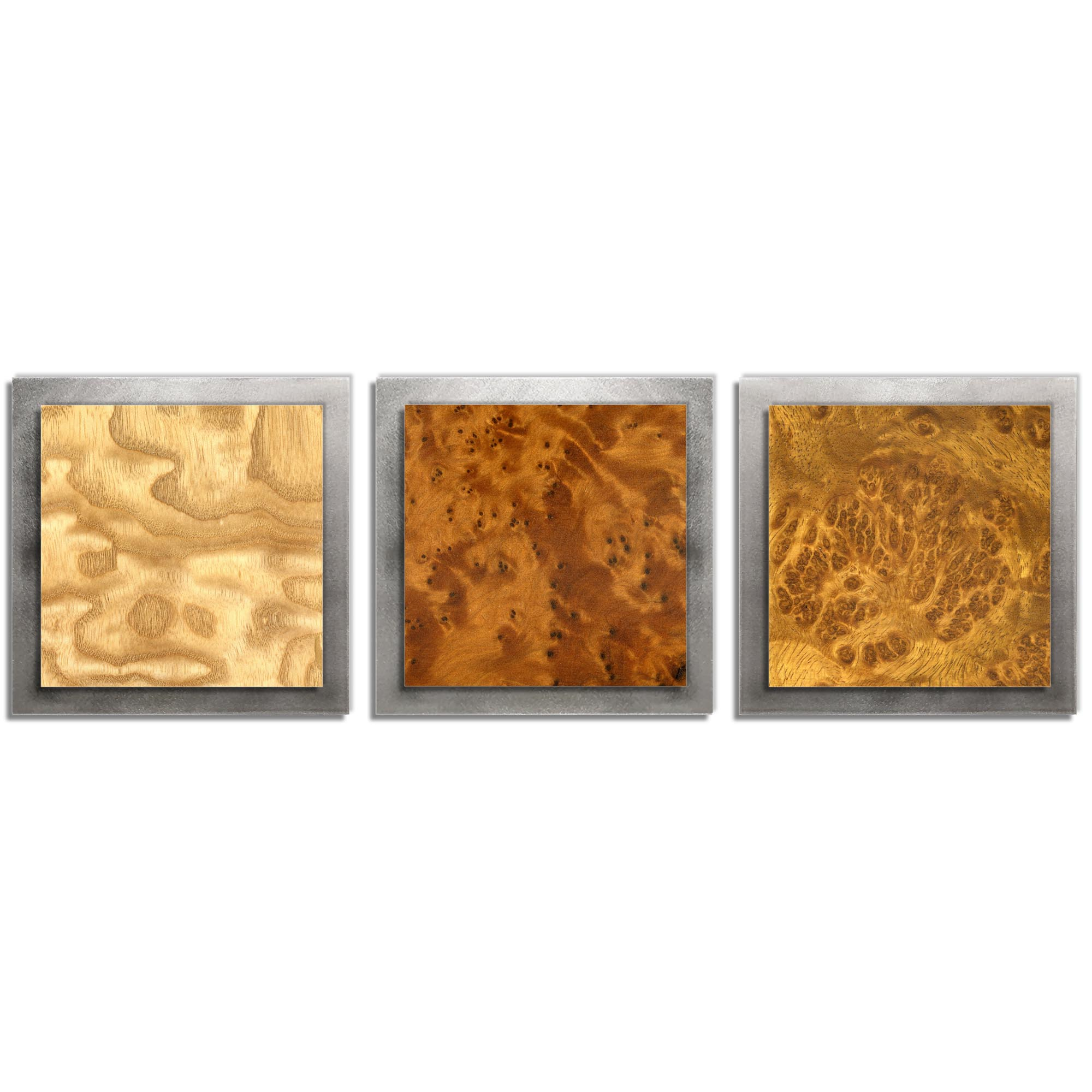 Jackson Wright 'Array Burl Essence Silver' 38in x 12in Contemporary Style Wood Wall Art