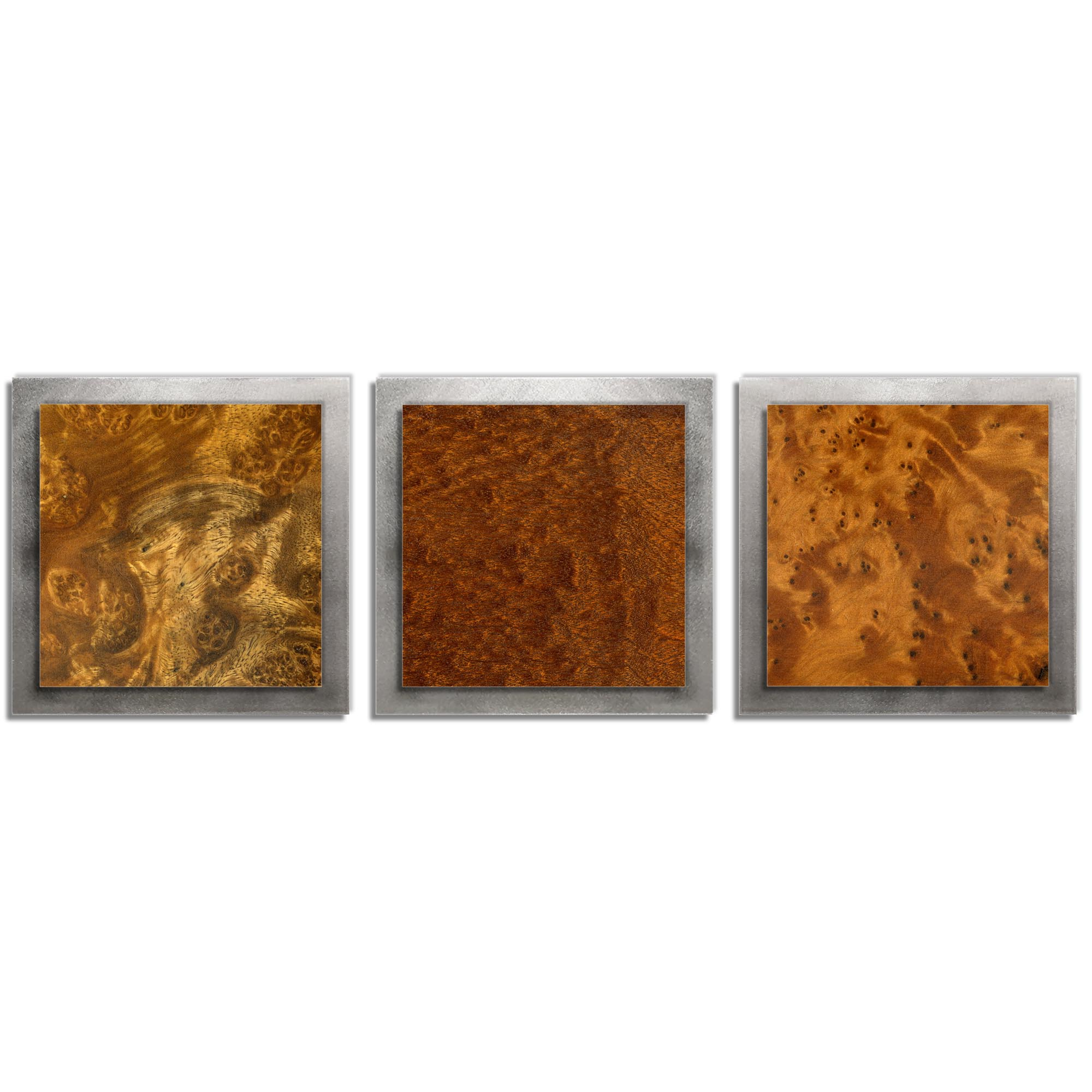 Jackson Wright 'Dark Burl Essence Silver' 38in x 12in Contemporary Style Wood Wall Art