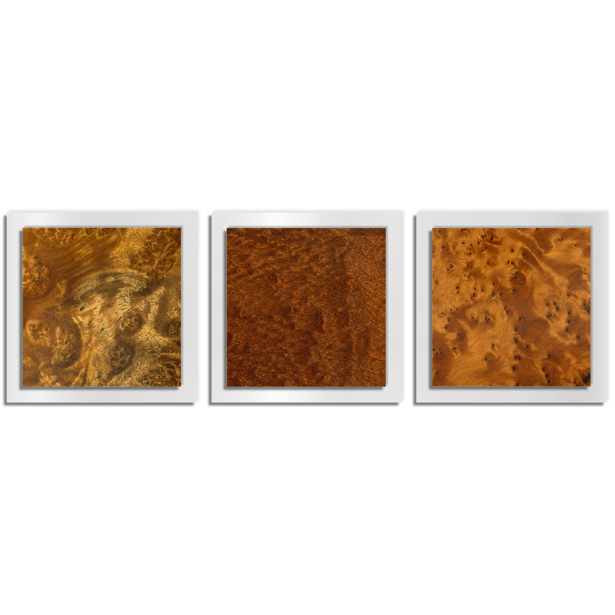 Jackson Wright 'Dark Burl Essence White' 38in x 12in Contemporary Style Wood Wall Art