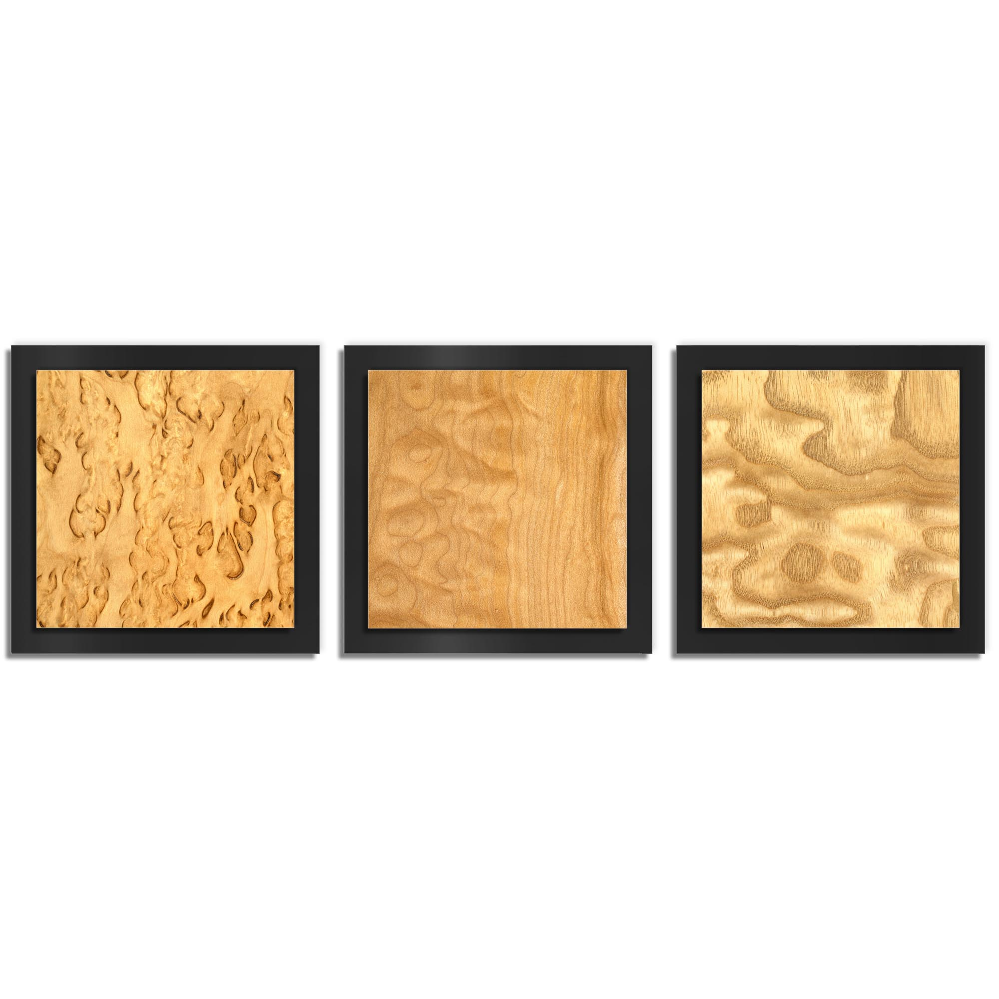 Jackson Wright 'Light Burl Essence Black' 38in x 12in Contemporary Style Wood Wall Art