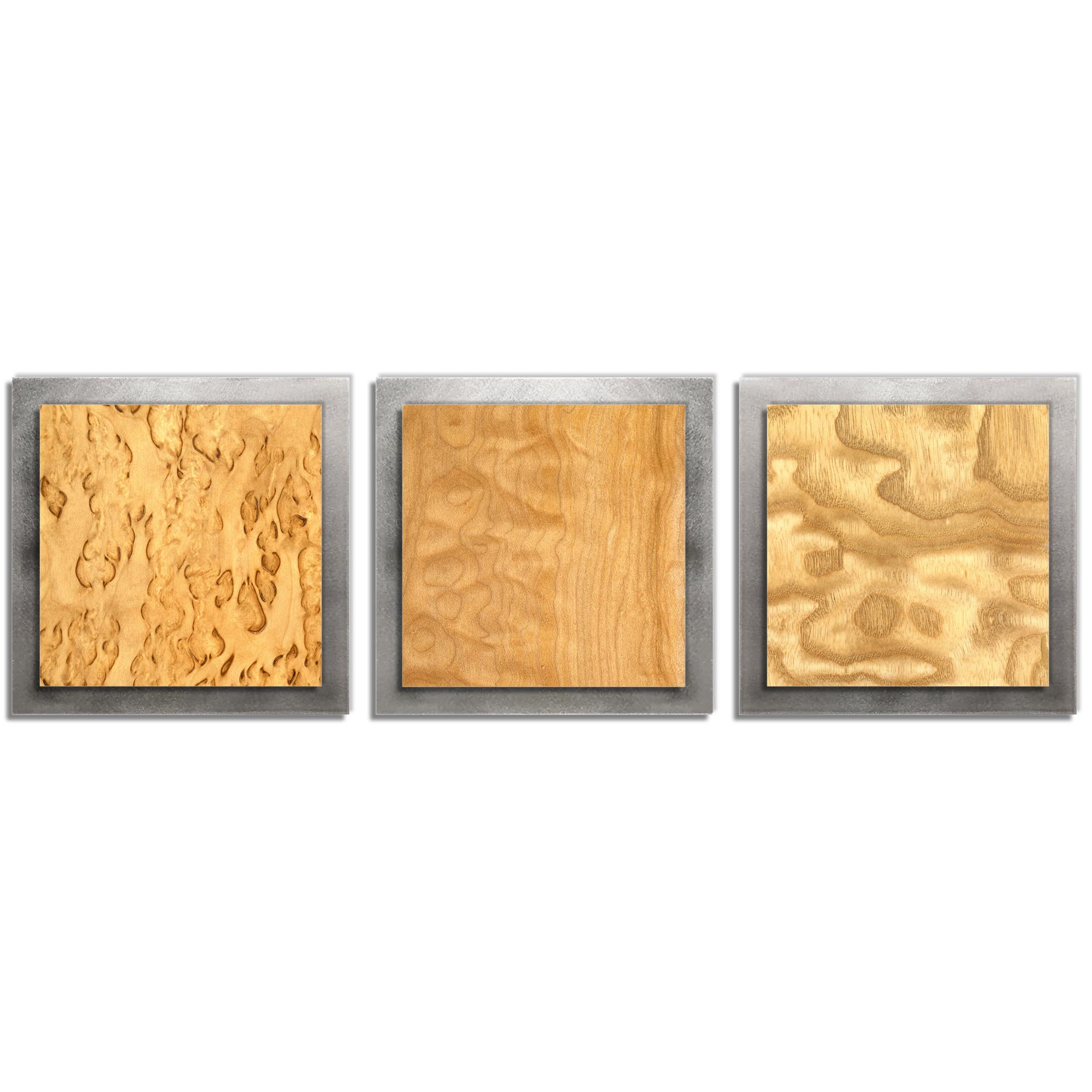 Jackson Wright 'Light Burl Essence Silver' 38in x 12in Contemporary Style Wood Wall Art