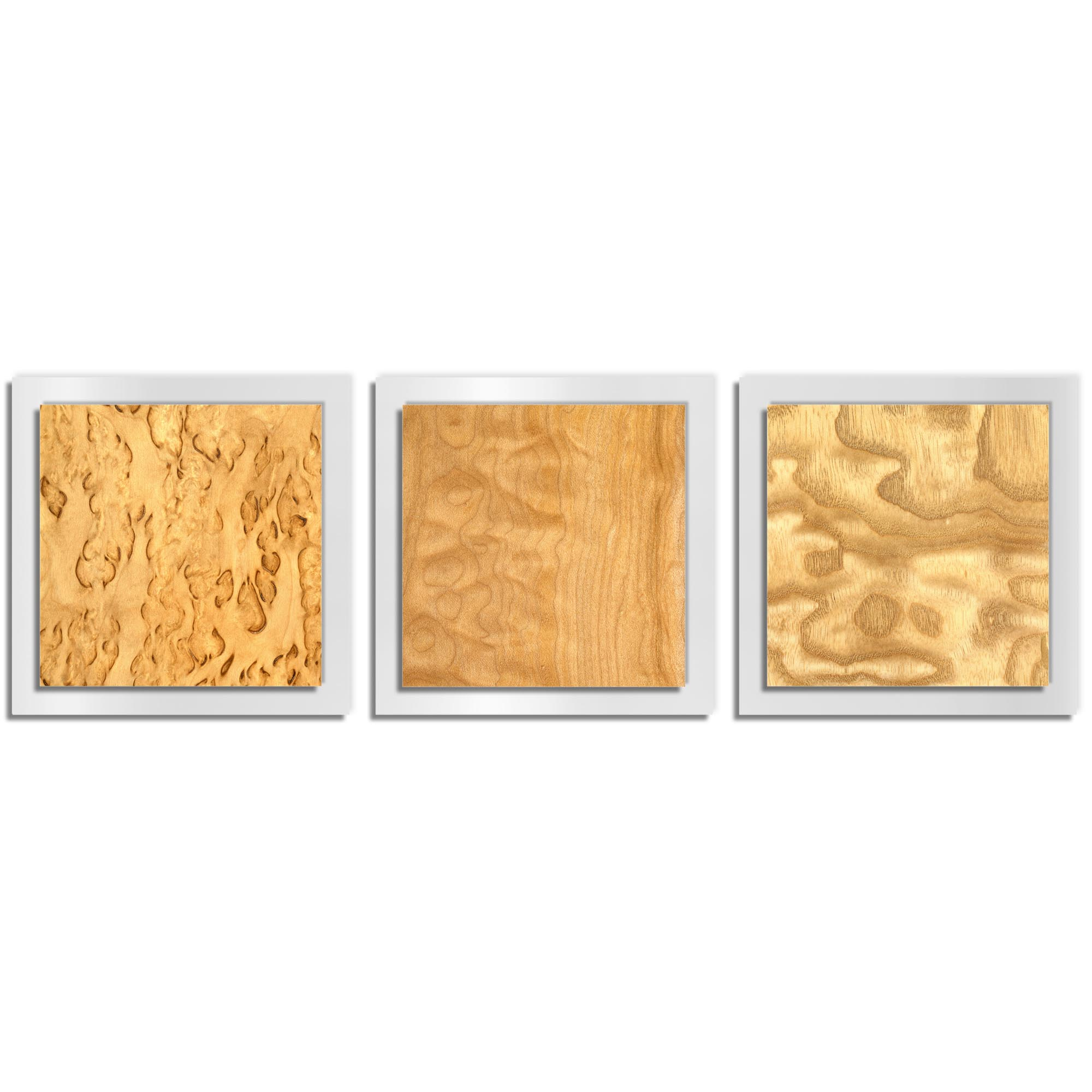 Jackson Wright 'Light Burl Essence White' 38in x 12in Contemporary Style Wood Wall Art